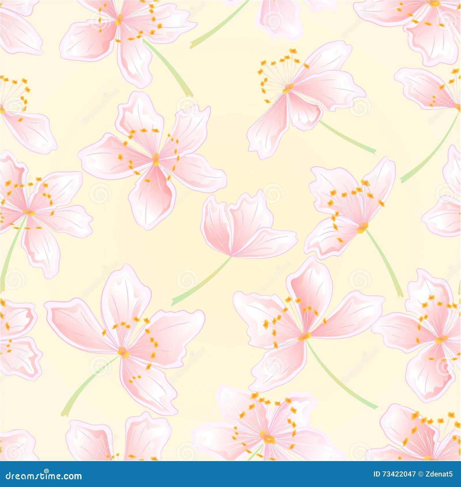 Vector inconsútil de los flores de Sakura de la textura