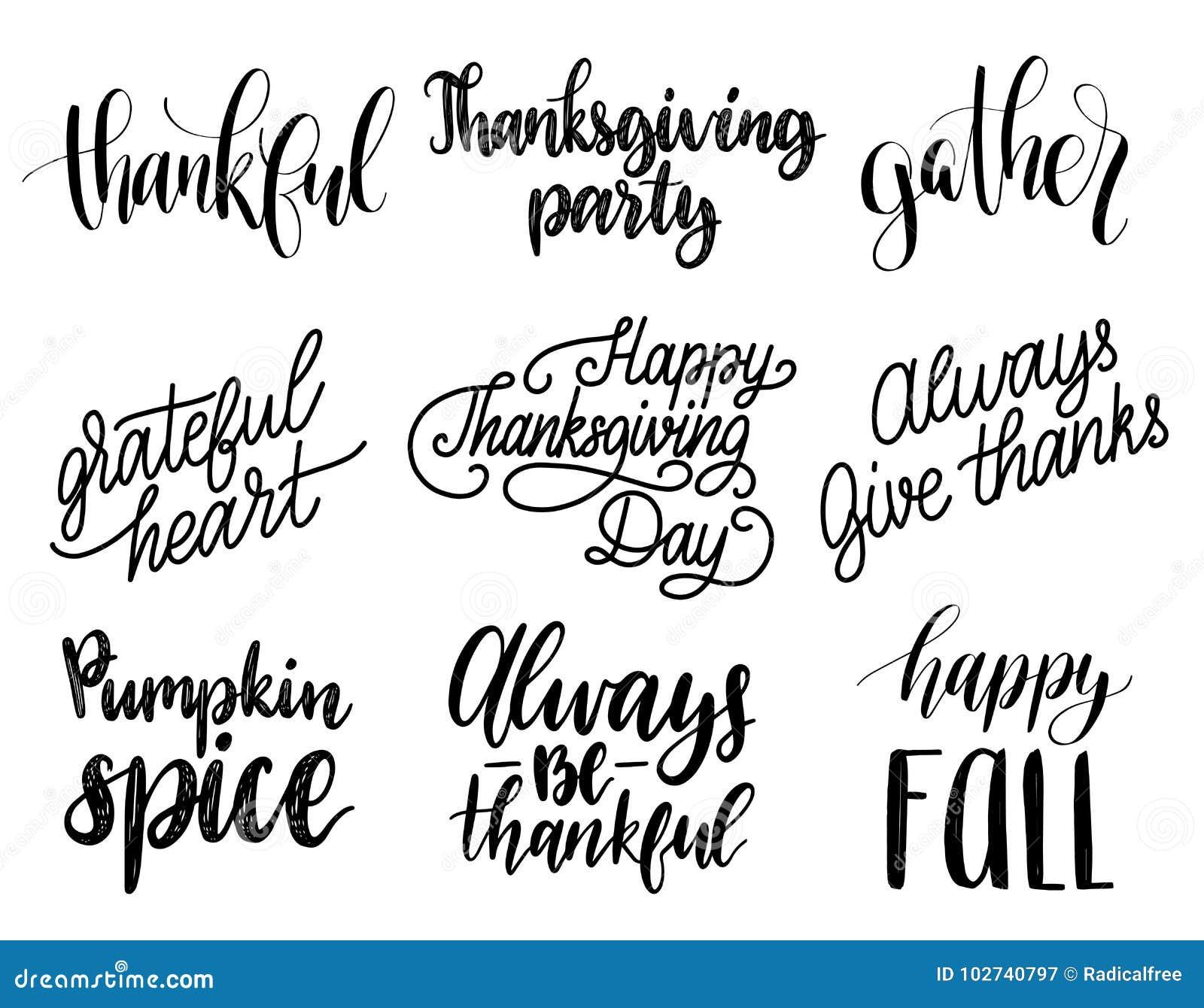 Vector l iscrizione di ringraziamento per gli inviti o le cartoline d auguri festive L insieme scritto a mano di calligrafia di è