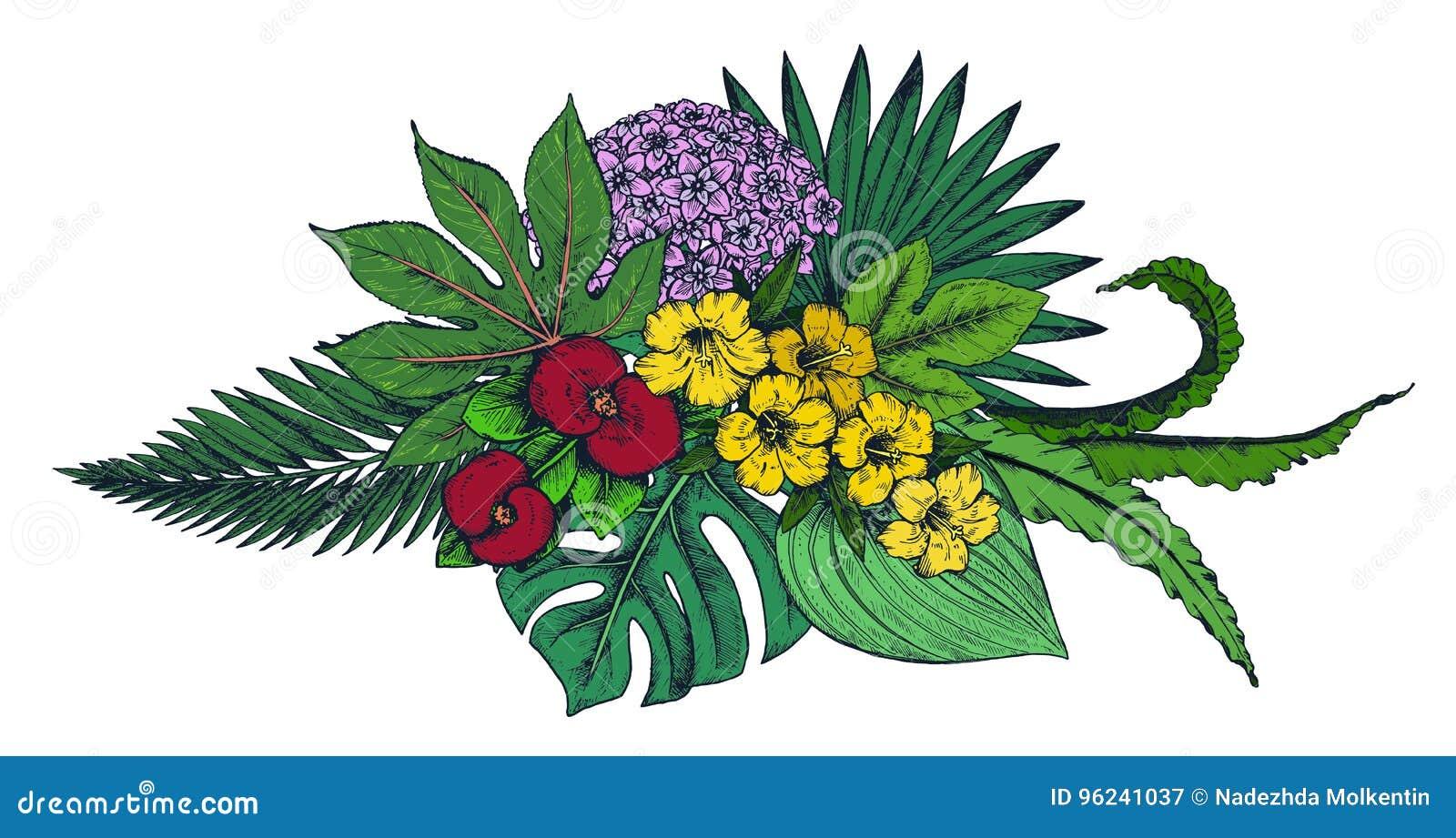 Mazzo Di Fiori Vector.Vector La Composizione Dei Fiori Tropicali Disegnati A Mano Le