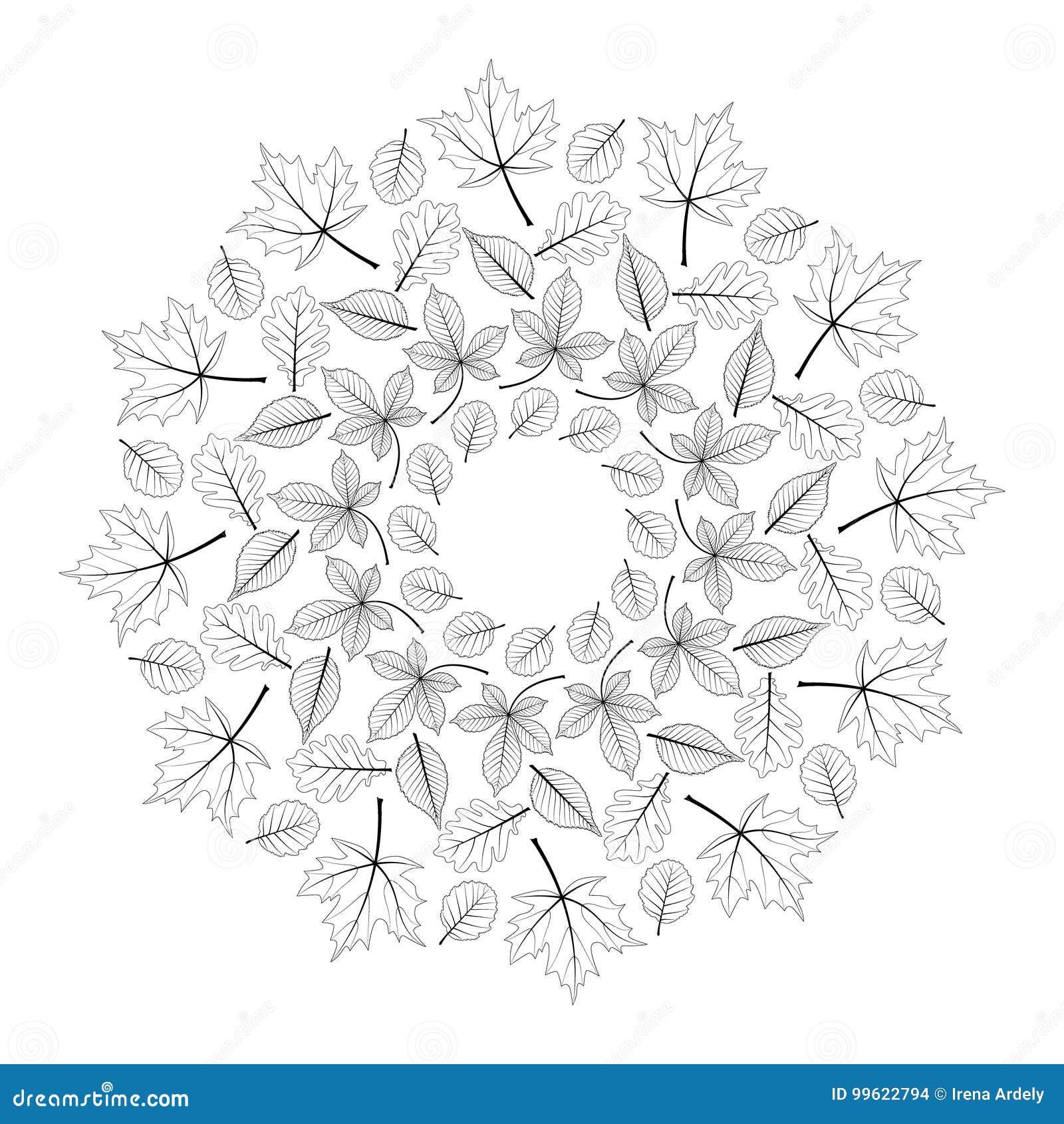 Vector La Mandala Rotonda In Bianco E Nero Di Autunno Con Le Foglie