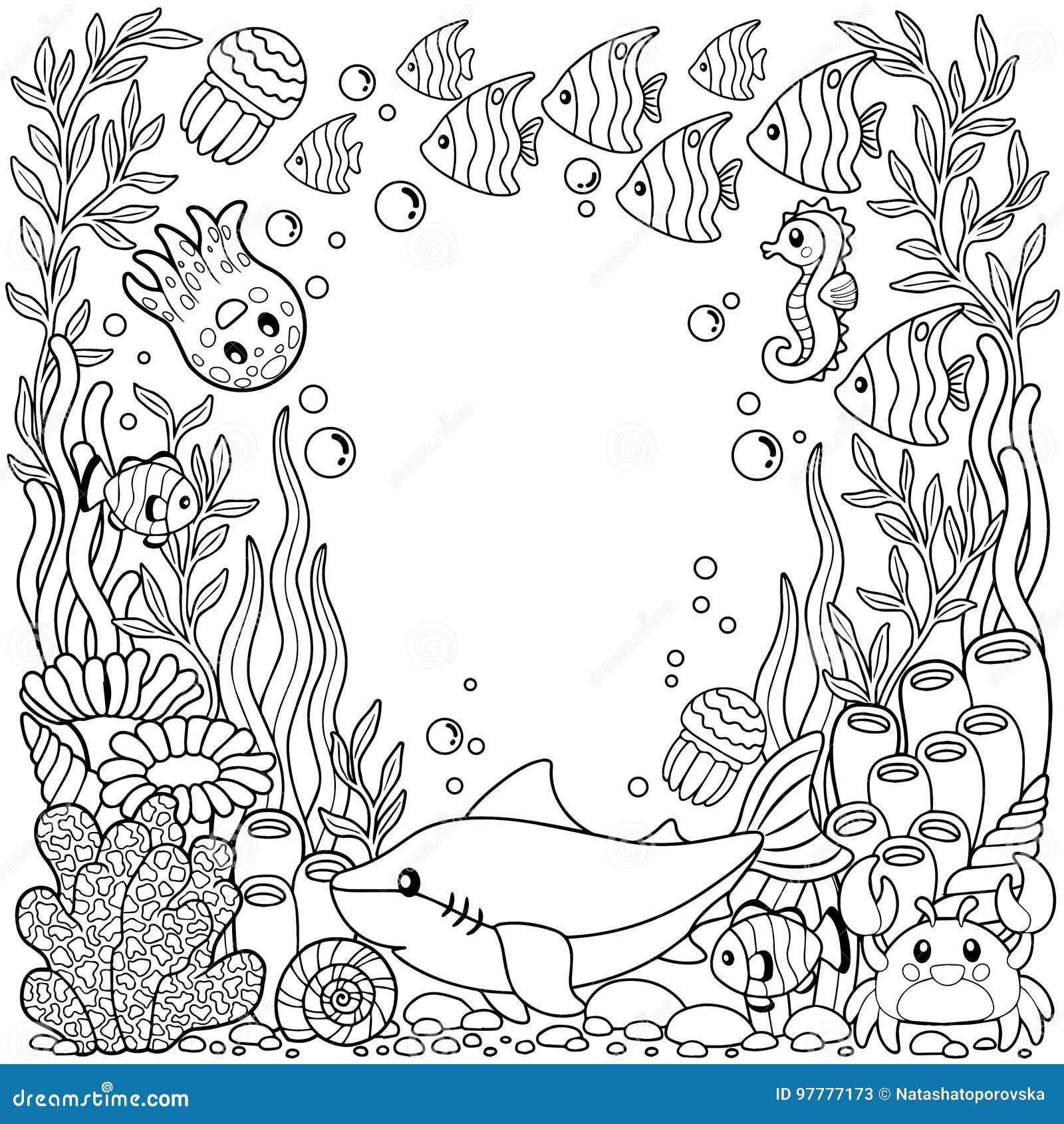 Excelente Linda Criatura Del Mar Para Colorear Fotos - Dibujos Para ...