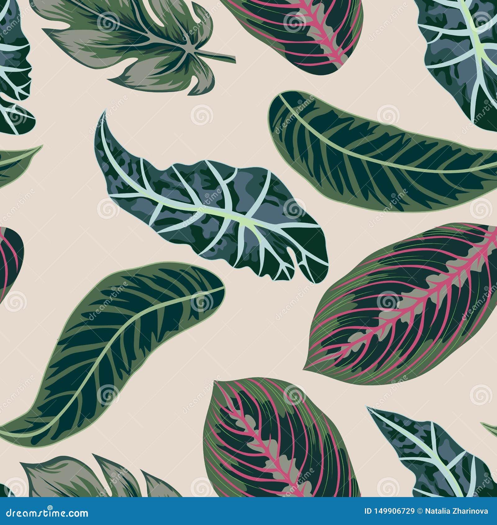 Vector Las hojas tropicales, selva salen del fondo inconsútil del estampado de flores del vector