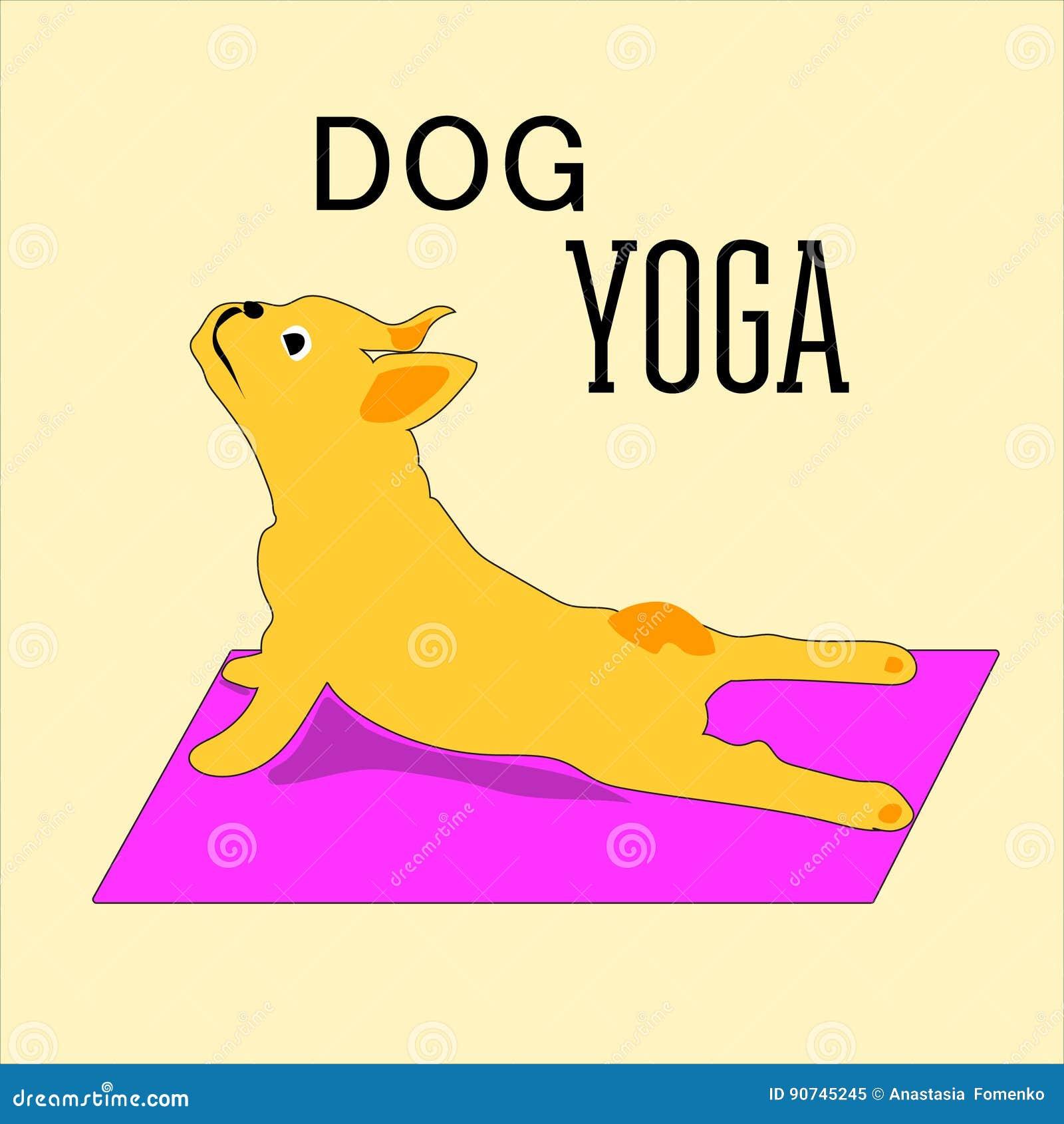 Vector las posturas pintadas a mano de la yoga con los animales de la historieta en diversas actitudes para el cuidado del cuerpo