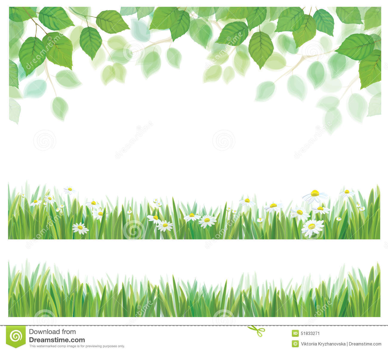 vector leaves  grass and daisy borders  stock vector