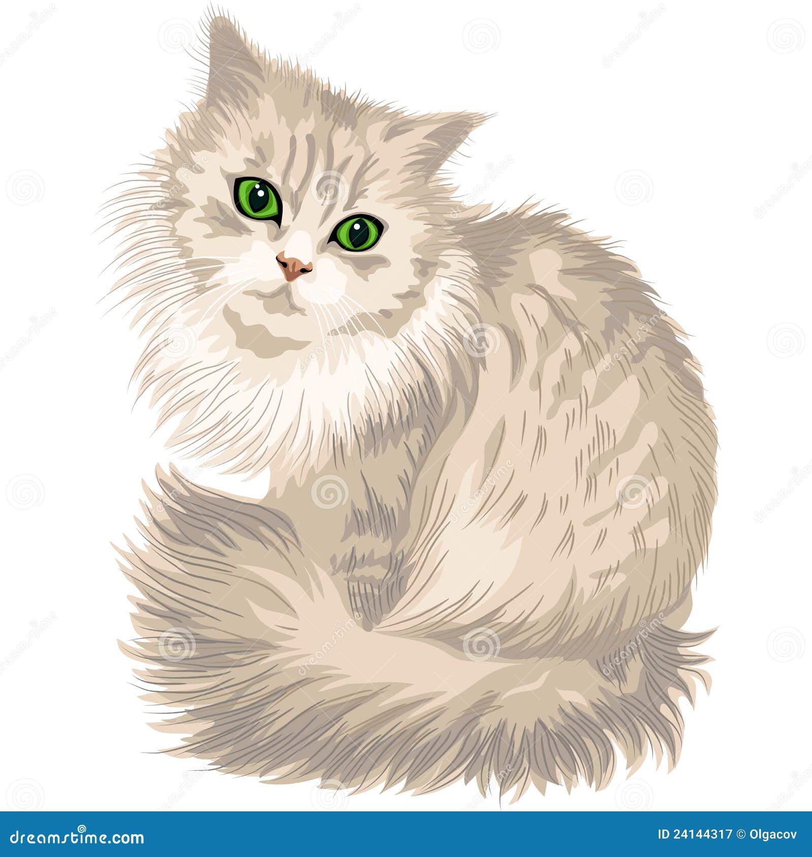 Пушистые кошки рисунок