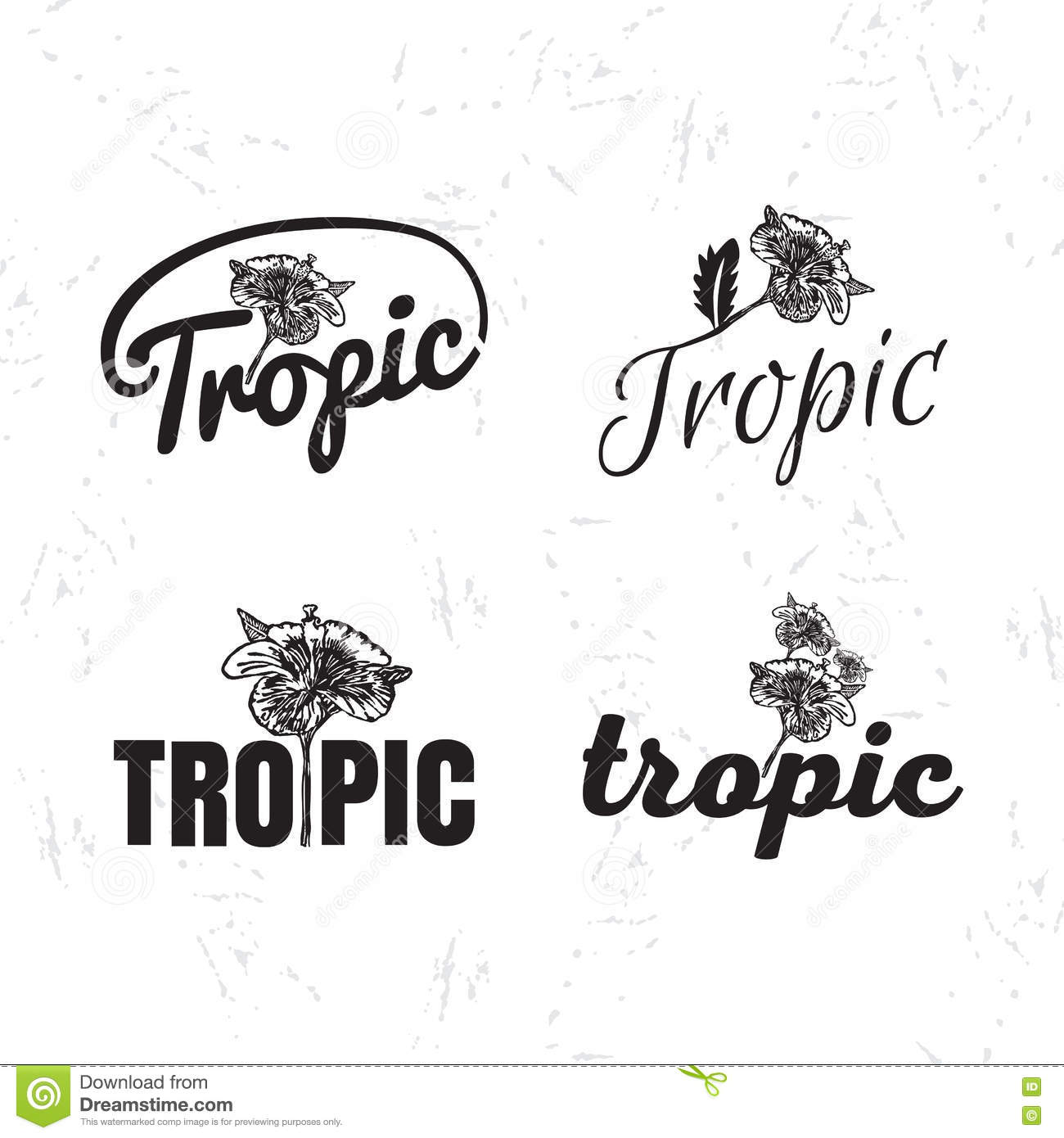 Vector Logo Set With Hibiscus Flower Stock Illustration
