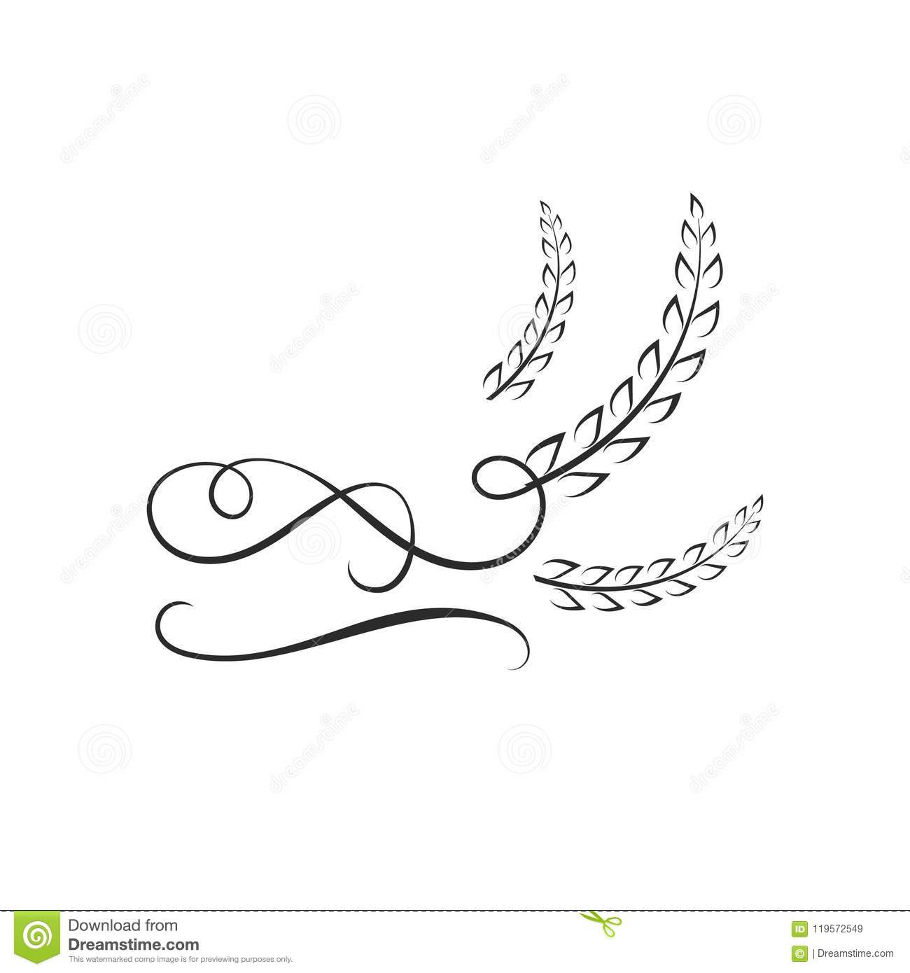 vector logo template rice with calligraphic swirls wheat icon