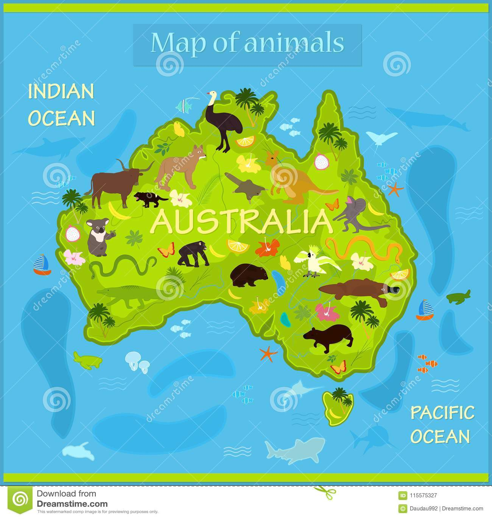Vector Map Of Animals In Australia Stock Vector Illustration Of
