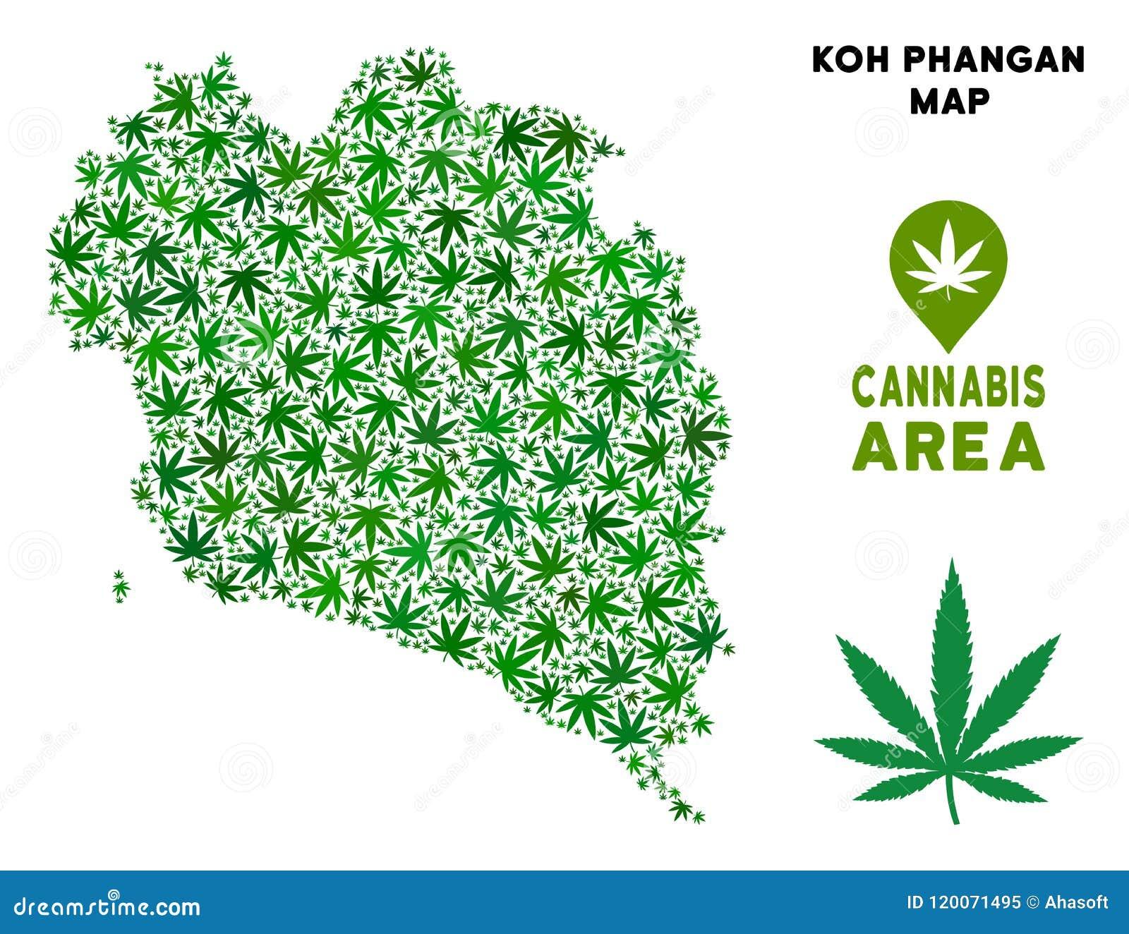 Koh Phangan Thailand Map.Vector Marijuana Composition Koh Phangan Thai Island Map Stock