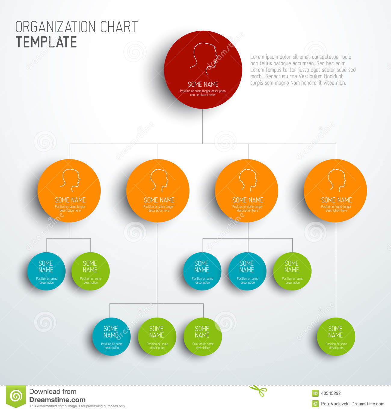 Vector Modern And Simple Organization Chart Template Stock