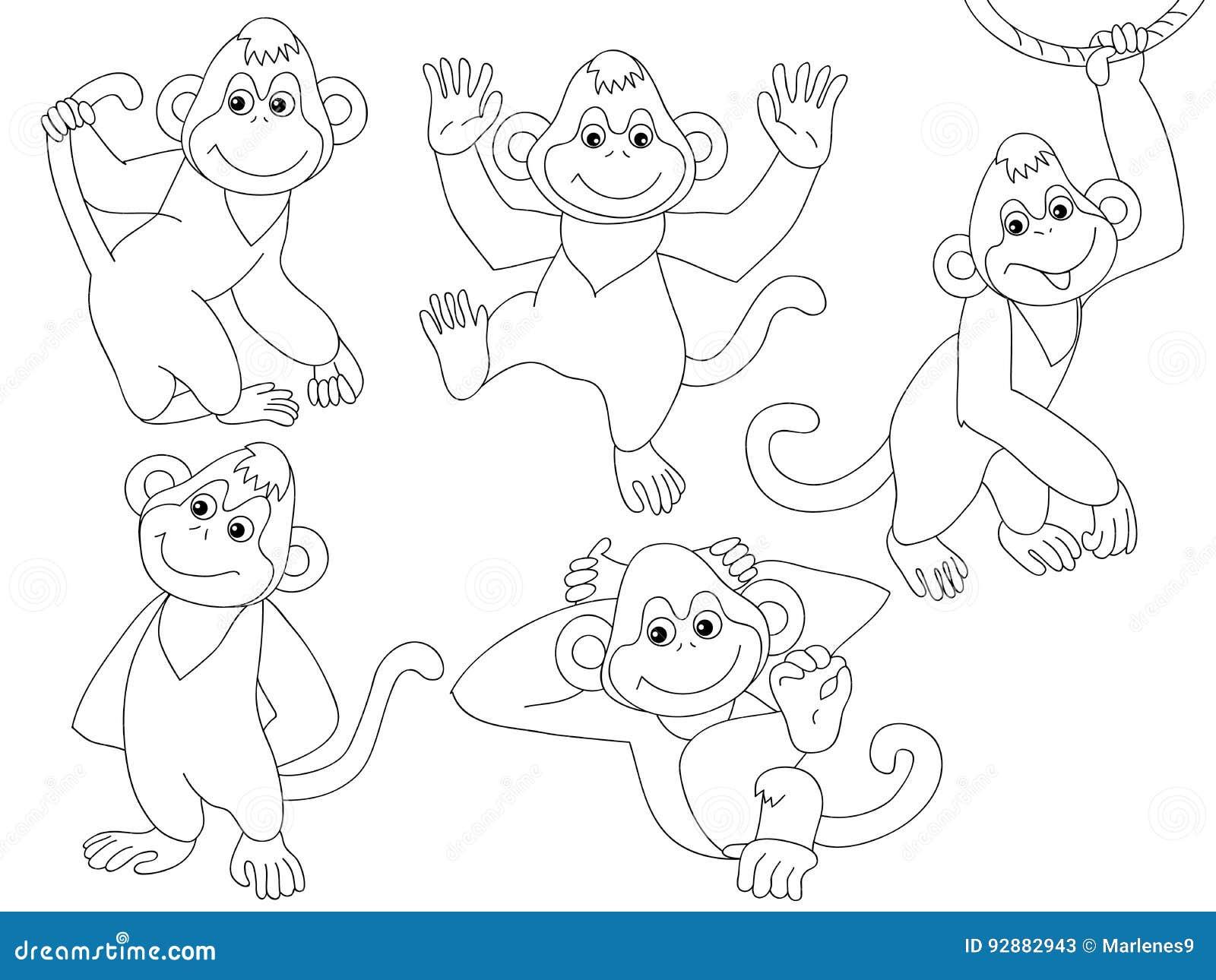 Vector Monkeys Set Stock Vector Illustration Of Face 92882943