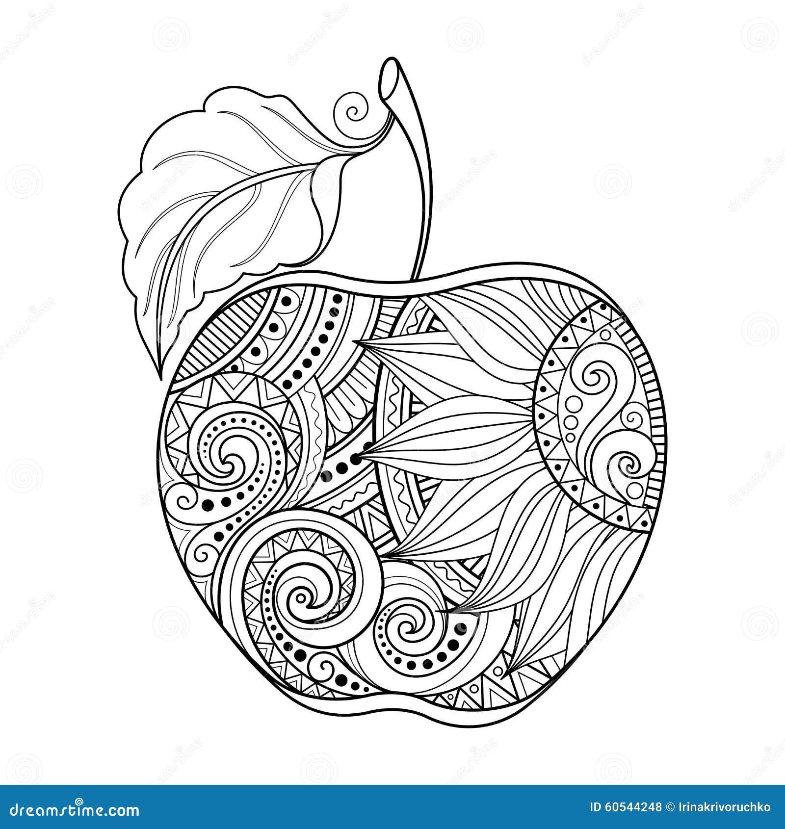 Contour Line Drawing Apple : Vector monochrome contour apple stock image