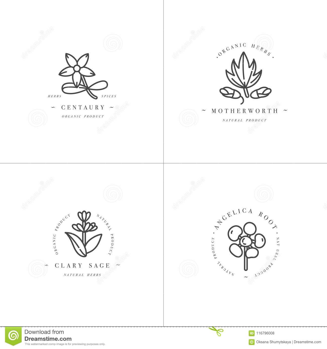 Vector Monochrome Set Design Templates And Emblems - Healthy Herbs
