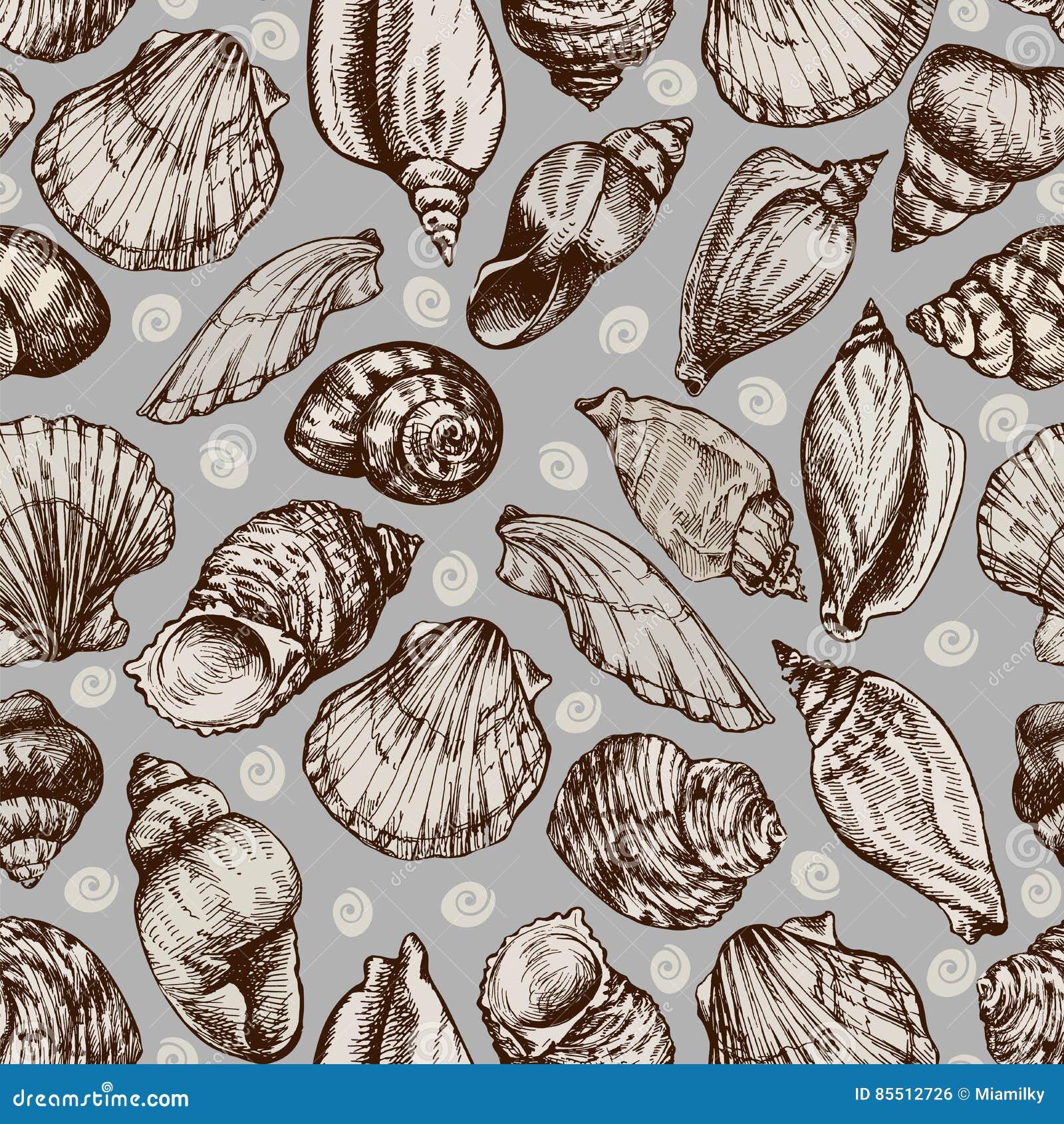 Vector naadloze uitstekende die schets van zeeschelpen op witte achtergrond wordt geïsoleerd Hand-drawn overzeese dieren