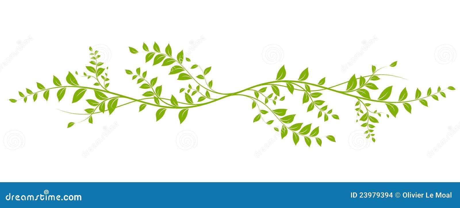 Vector Natural Design Element Stock Images Image 23979394