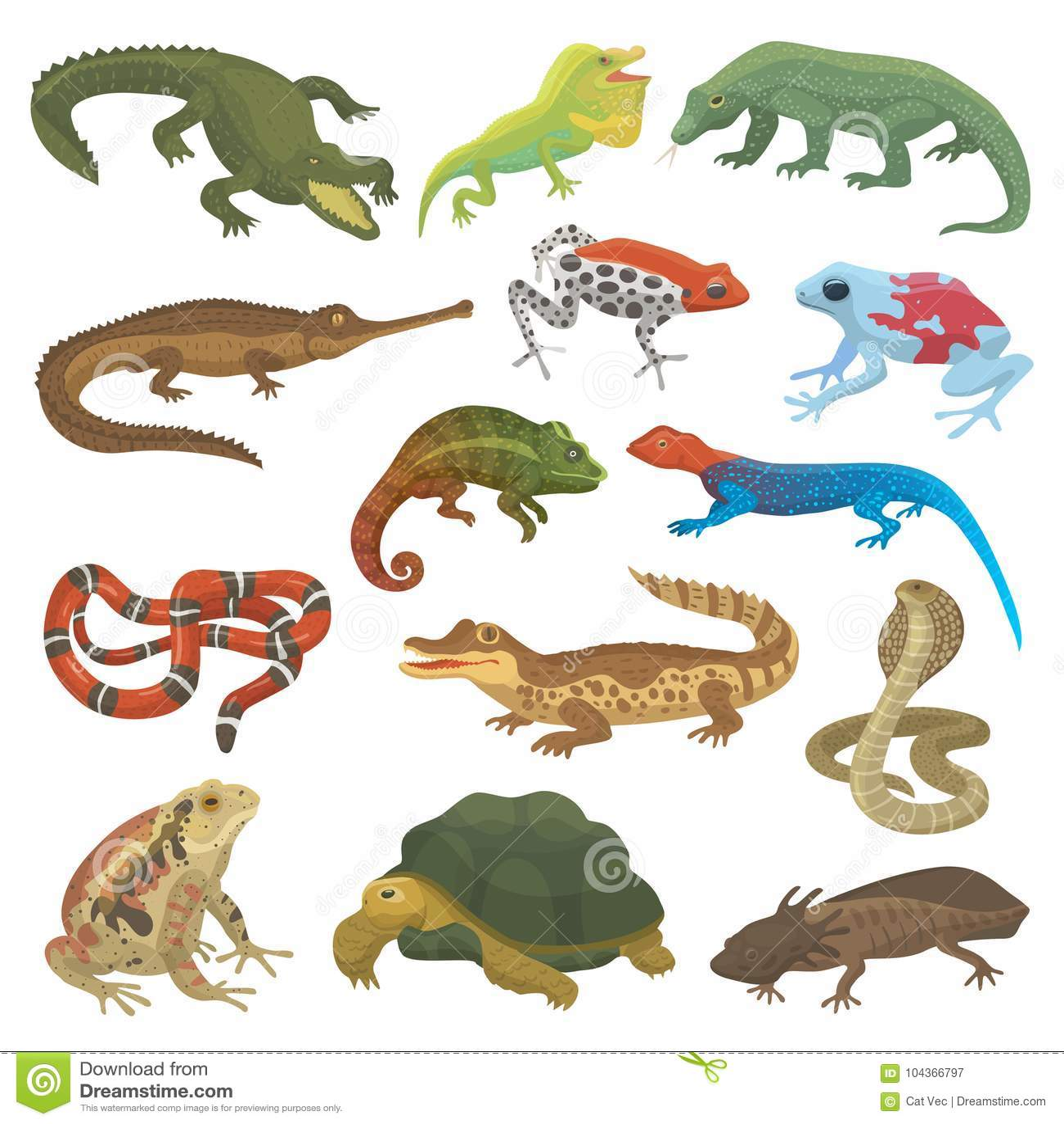 Vector o camaleão selvagem dos animais selvagens animais do lagarto da natureza do réptil, serpente, tartaruga, ilustração do cro