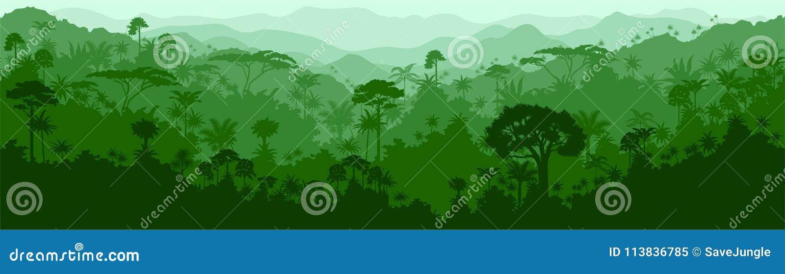 Vector o fundo tropical sem emenda da selva de Colômbia Brasil da floresta úmida