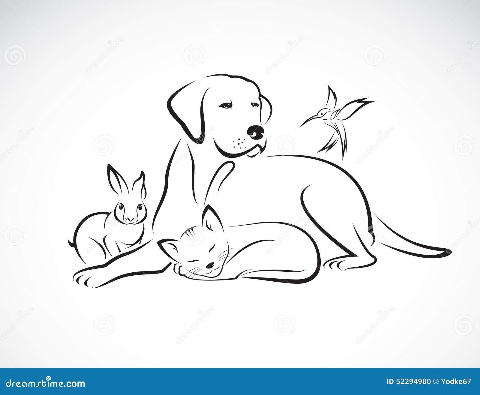 Vector o grupo de animais de estimação - cão, gato, pássaro, coelho,