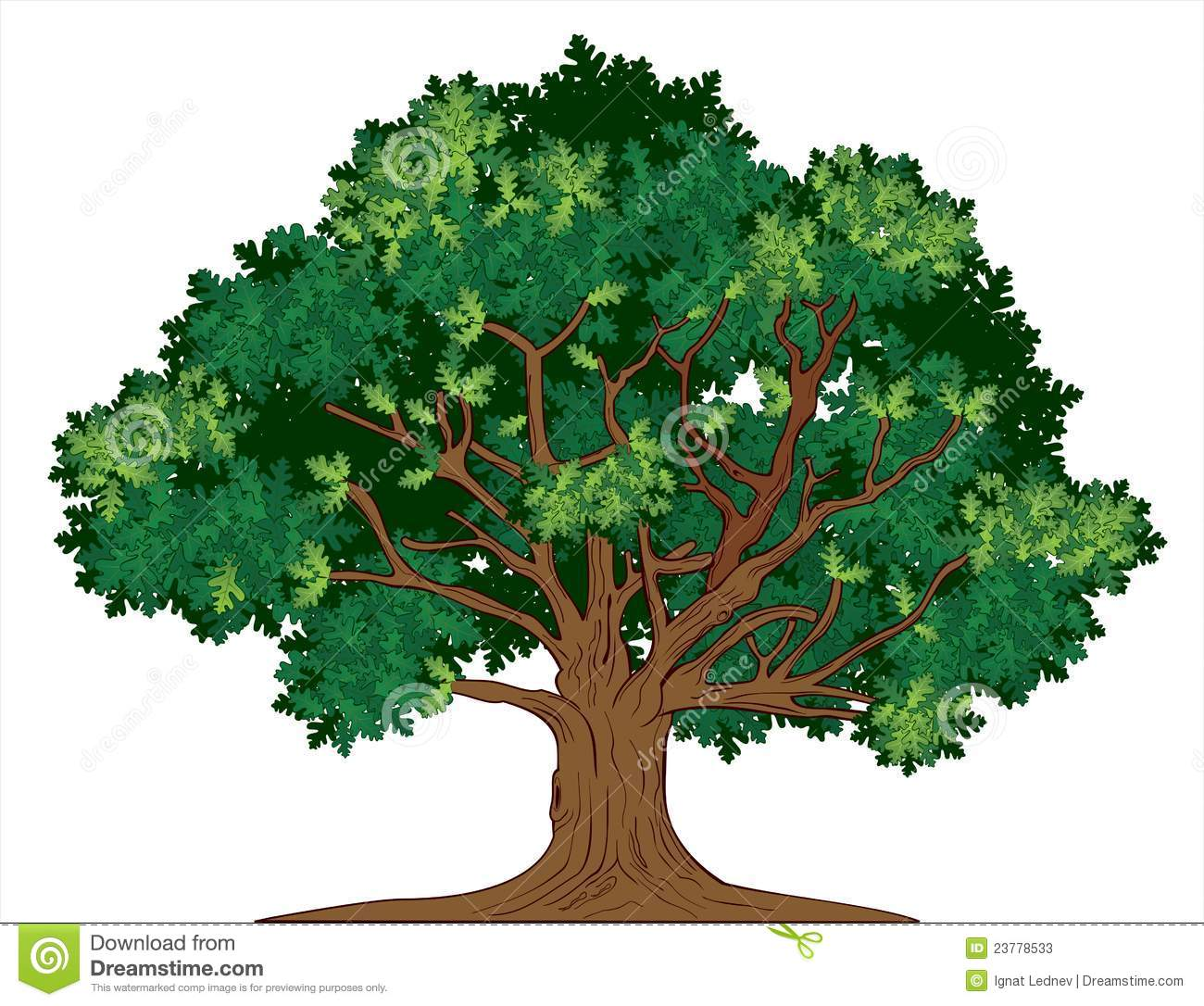 Vector Oak Tree Stock Photos - Image: 23778533