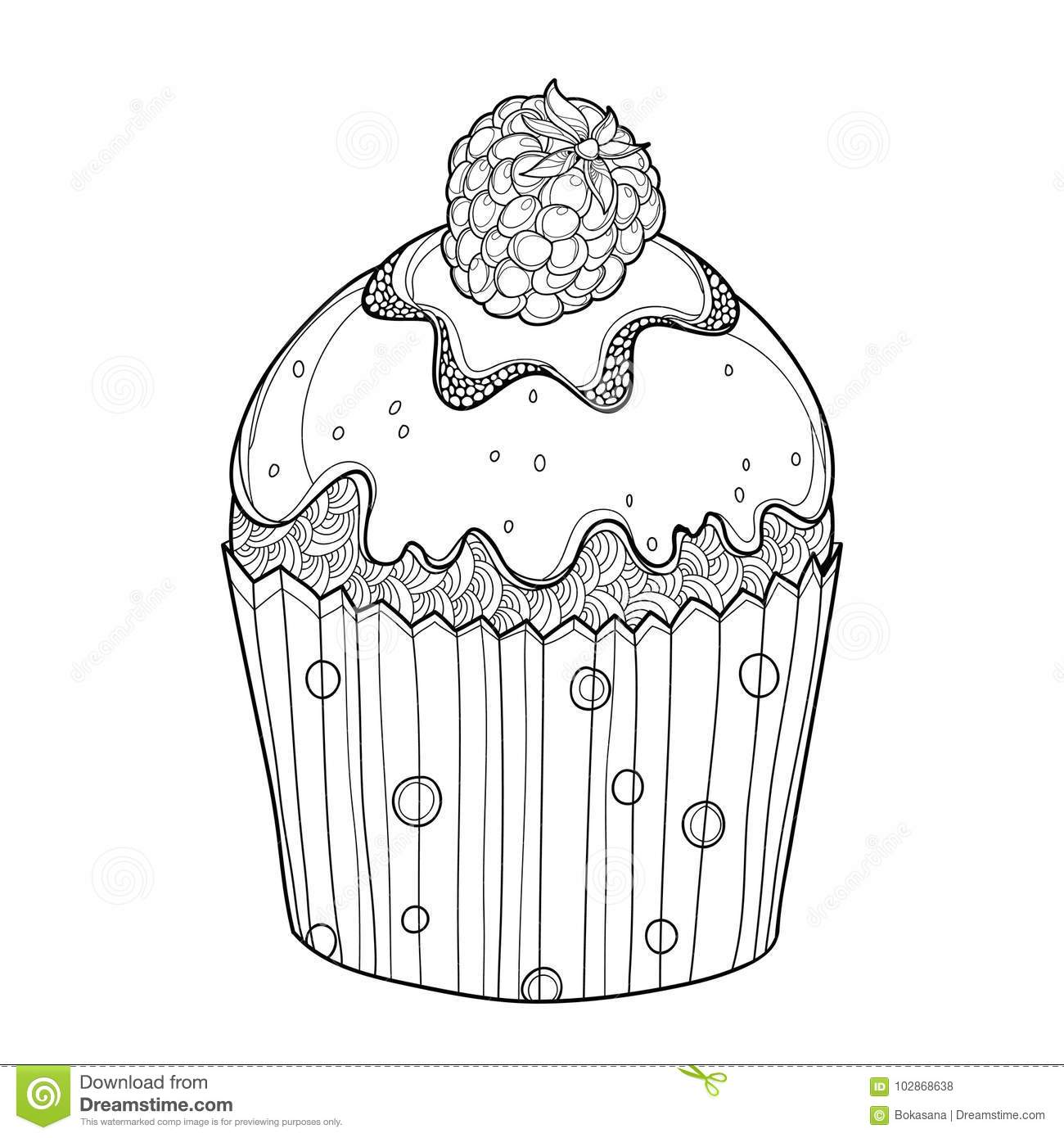 Vector Outline Cupcake With Raspberry Ripe Berry In Black ...