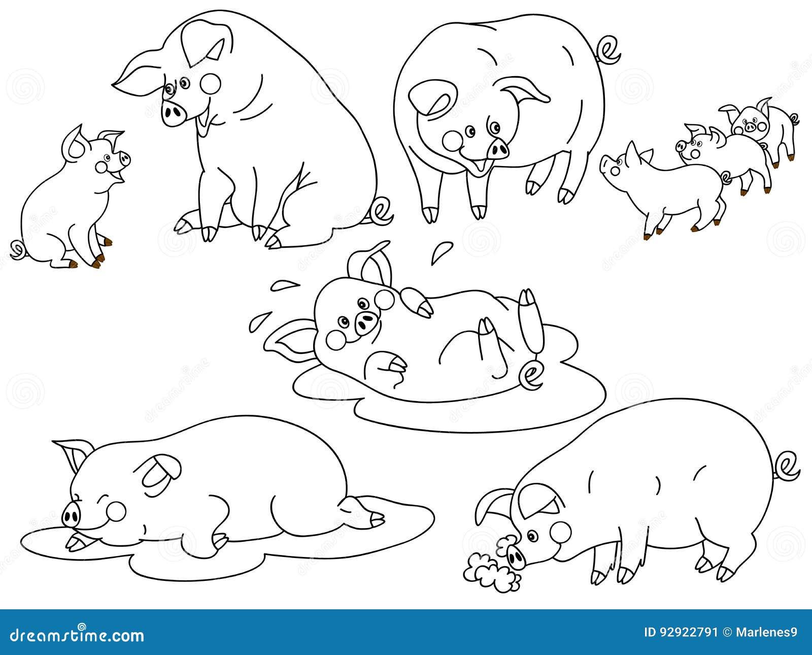 Vector Pigs Set stock vector. Illustration of small, swine ...