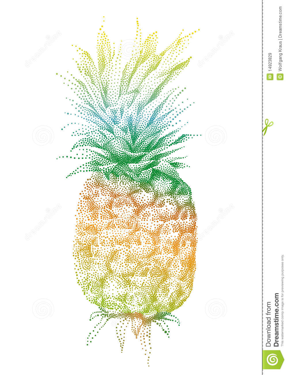 vector pineapple royalty free stock images image 14923829