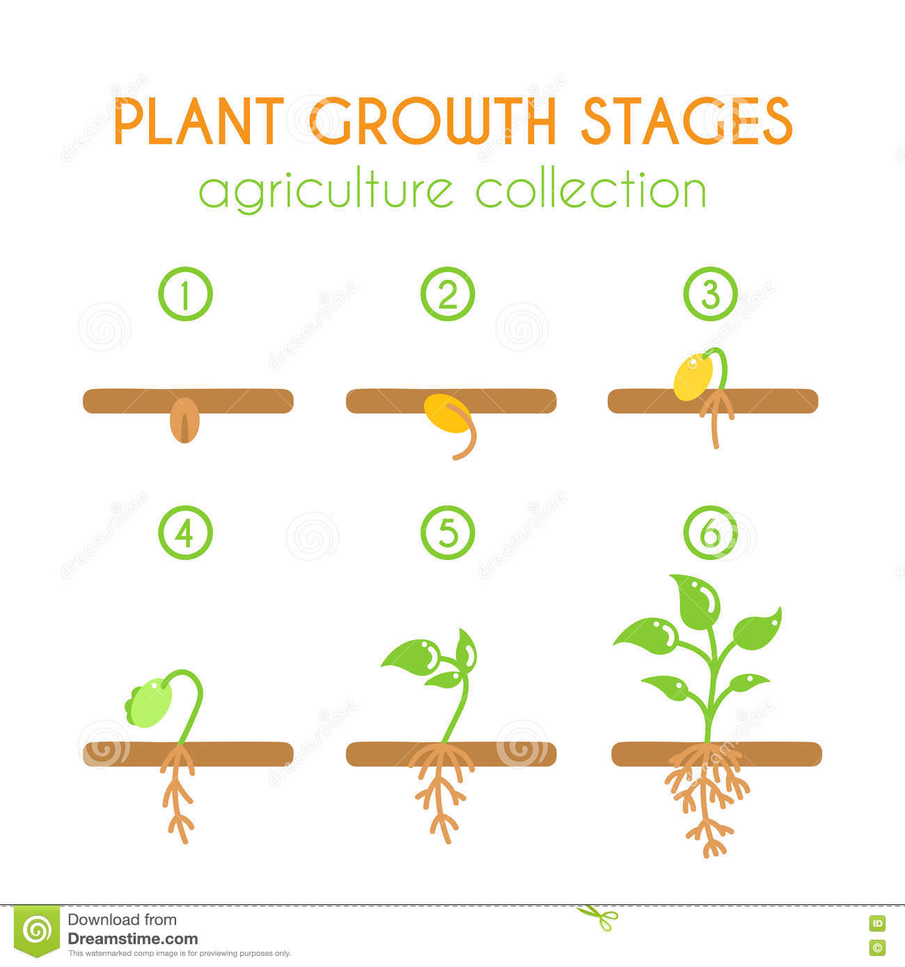process of planting growing and selling Process flow of consignment sales process:- 1:- consignment fill-up and pick-up with the consignee located in european country other than the plant / warehouse located country 2:- after goods movement is posted with movement type 631/632 respective consignment process, plant abroad invoice – wia is generated.