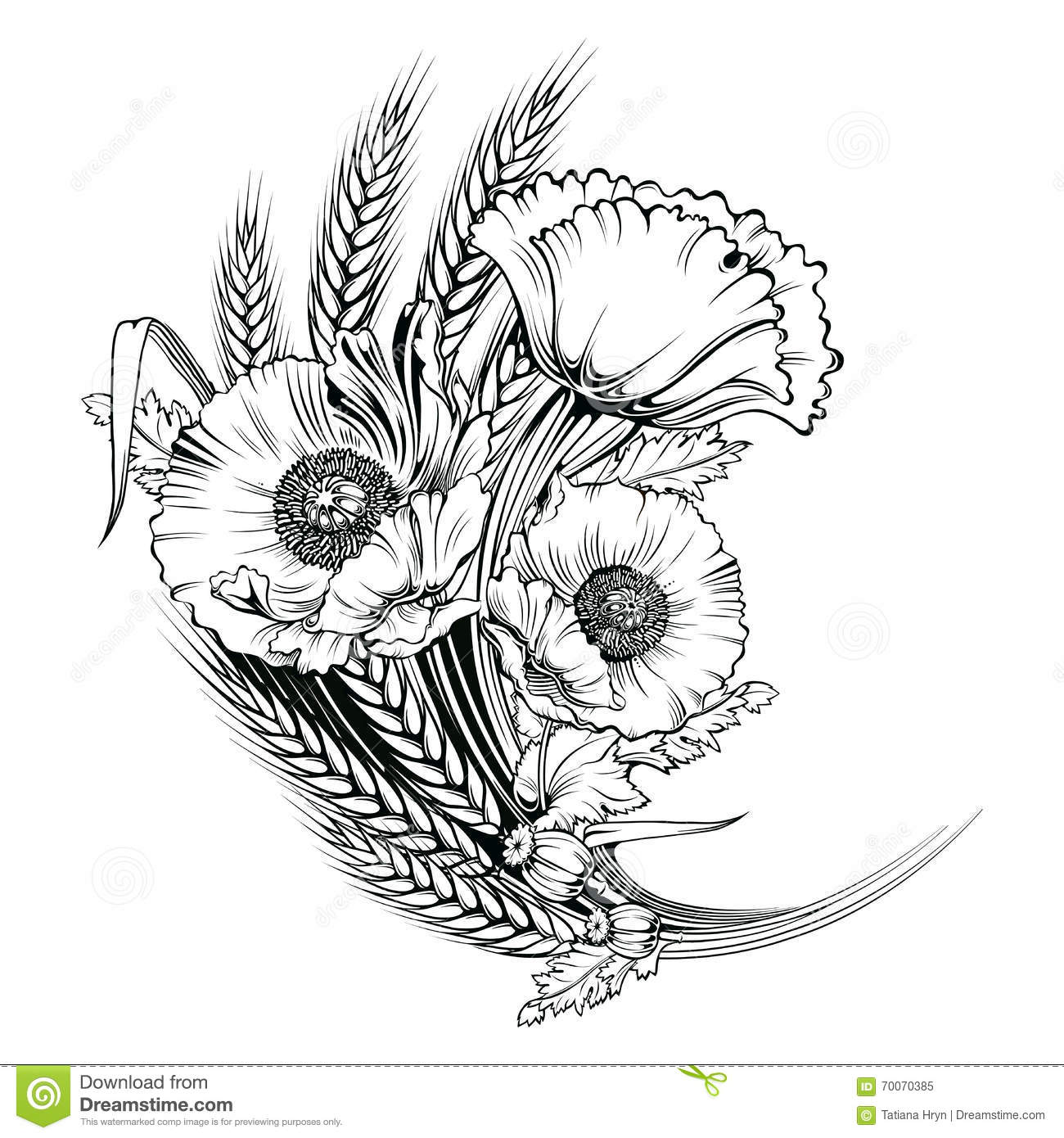 Line Art Illustration : Vector poppy flower engraving illustration stock
