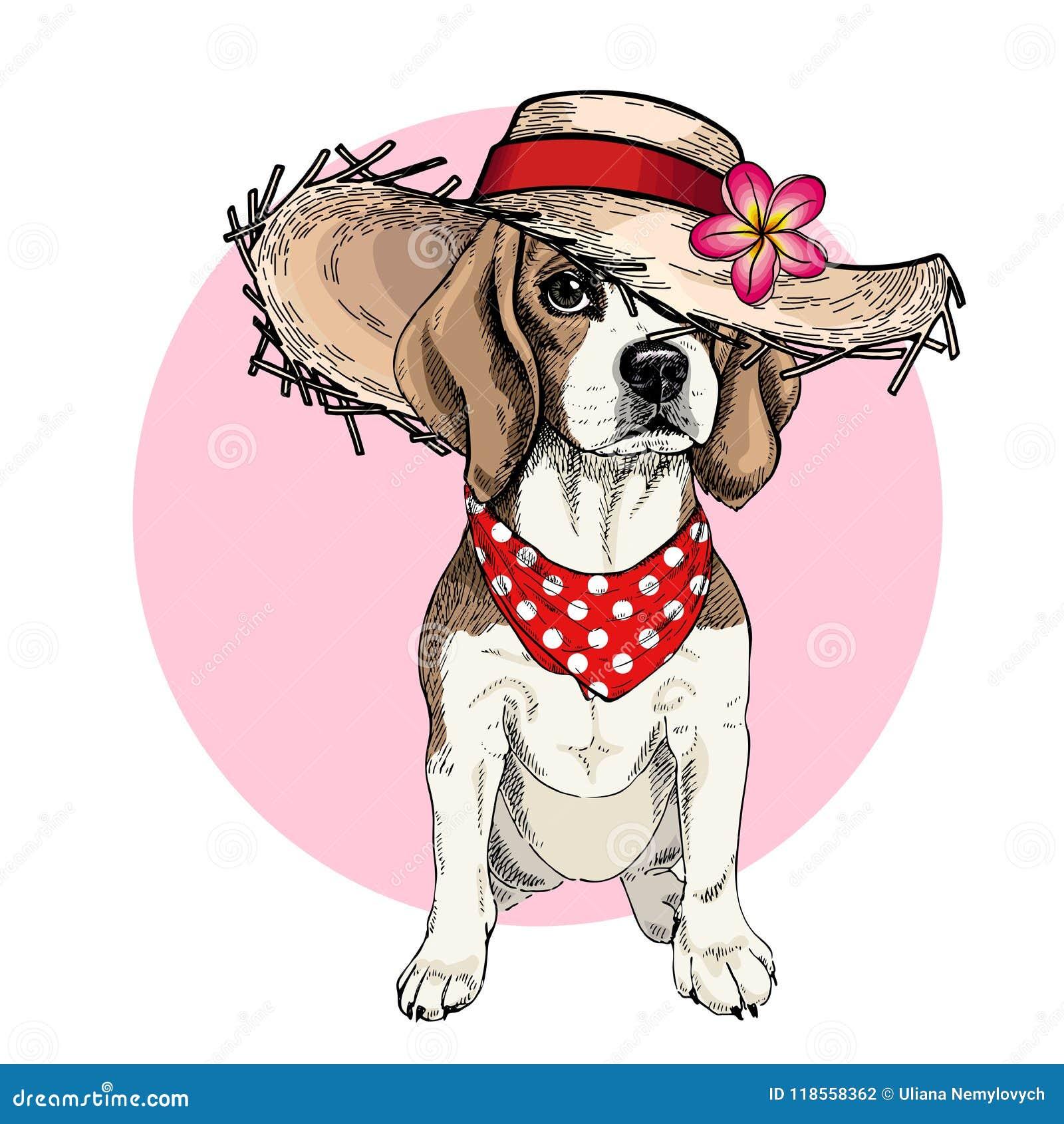 Vector Porträt des Spürhundhundetragenden Strohhutes, der Blume und des Tupfen Bandana Sommermode-Karikaturillustration Hand