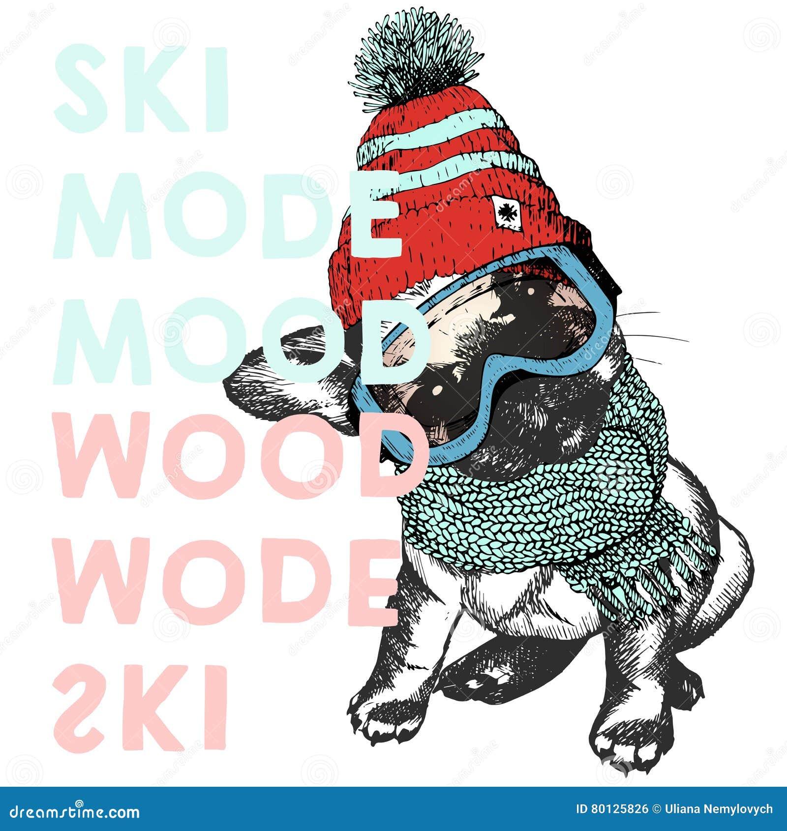 79af066611b1 Snow Goggles Stock Illustrations – 2
