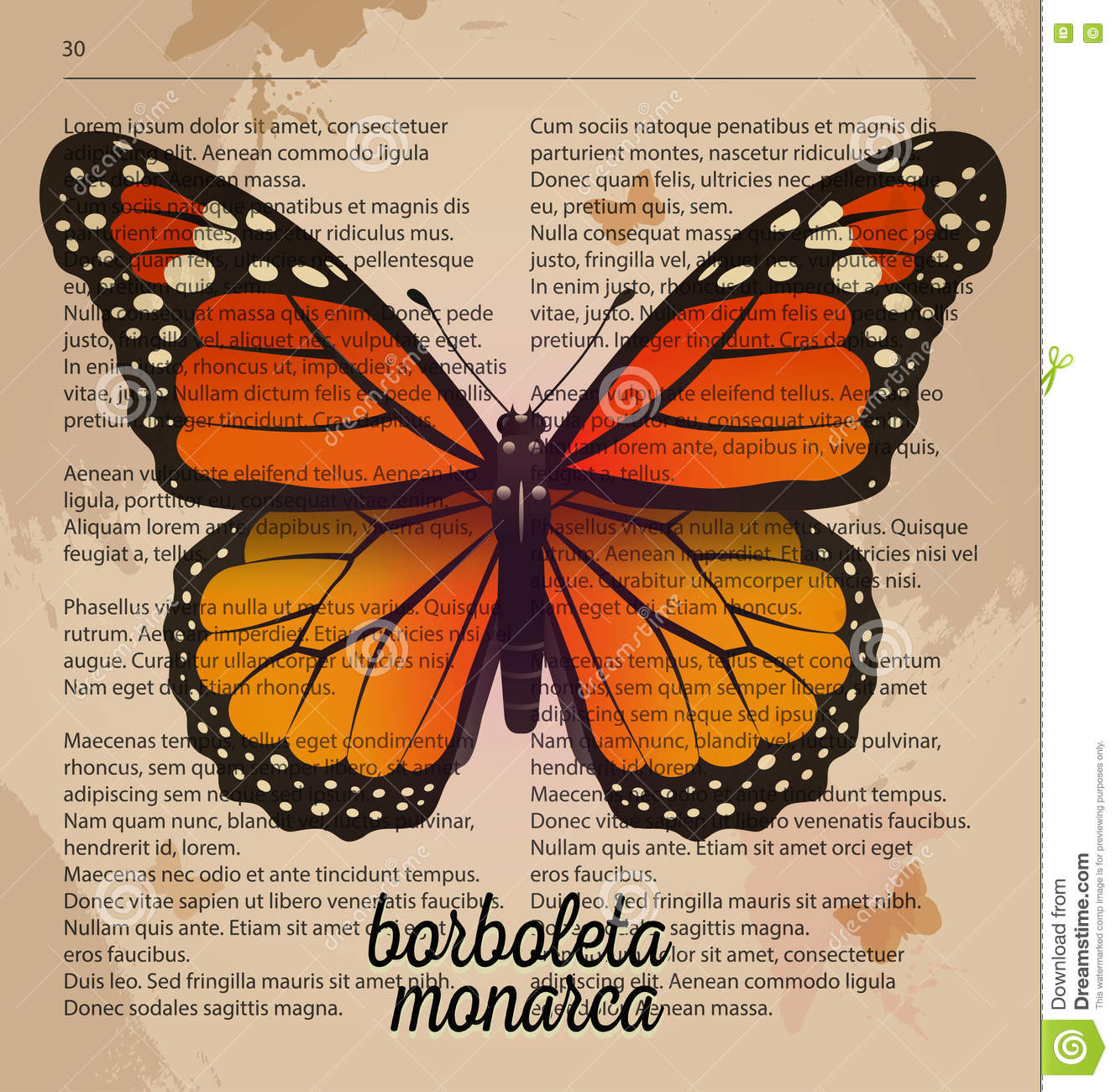 photo about Printable Vintage Dictionary Pages named Vector Print Orange Butterfly Borboleta Monarca. Printable