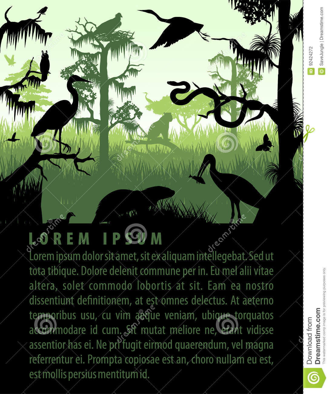 Vector Rainforest Wetland Silhouettes In Sunset Design Template With ...