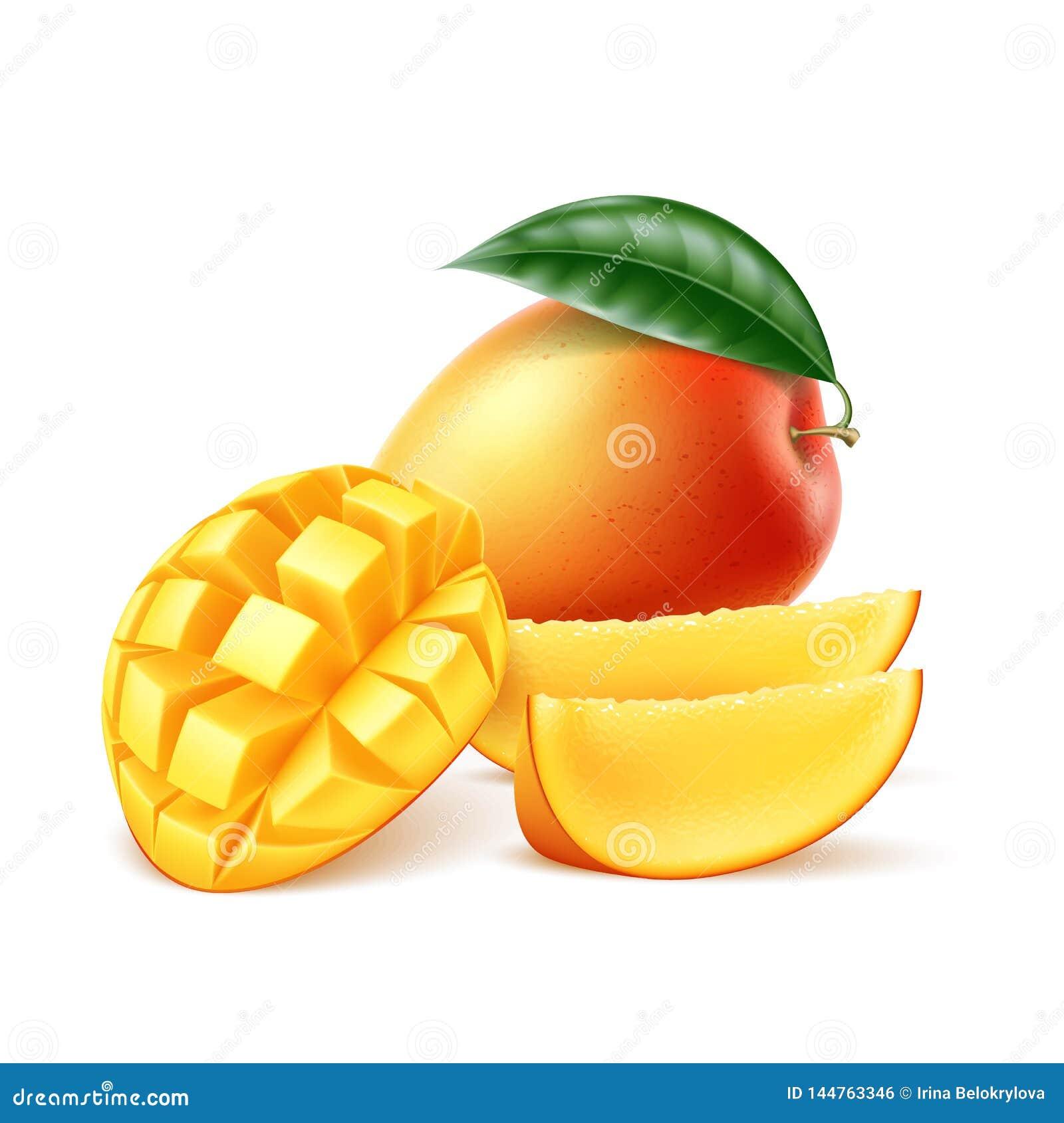 Vector realistisch rijp mangofruit met blad