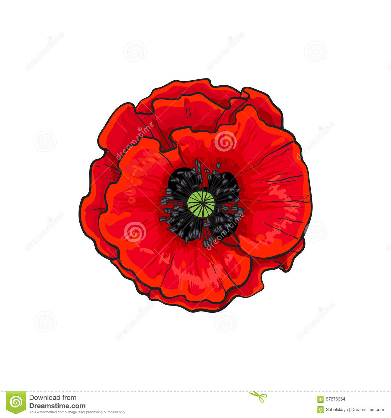 Vector Red Poppy Flower Blossom Blooming Closeup Stock Vector
