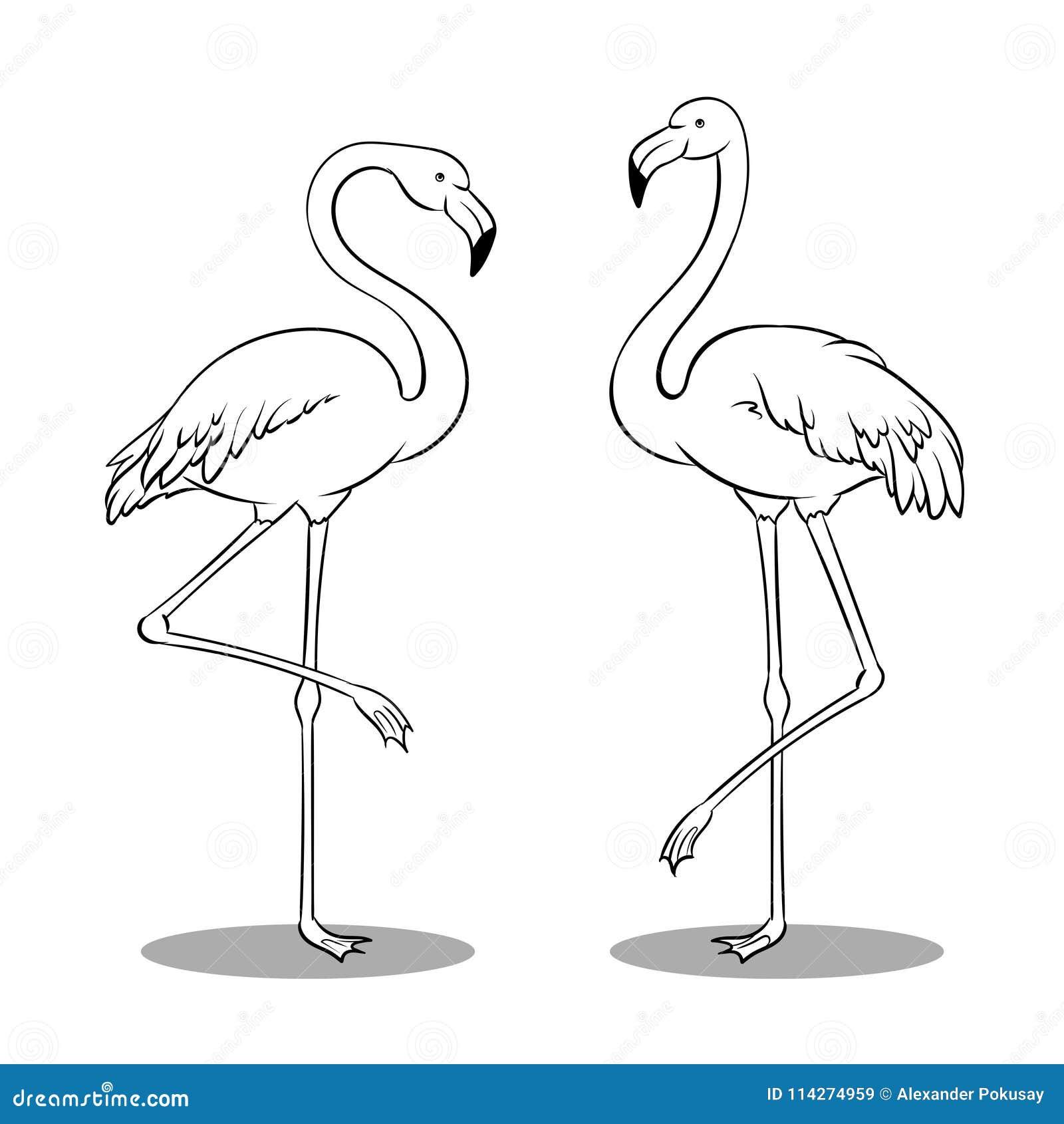 Excepcional Colillas De Pájaros Enojados Para Colorear Foto - Ideas ...