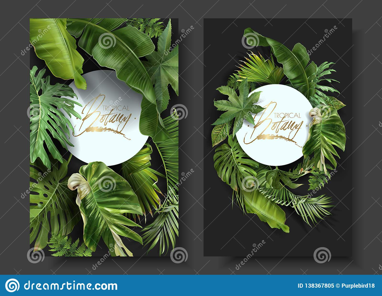 Vector Round Banners With Green Tropical Leaves Stock Vector Illustration Of Papaya Botanical 138367805