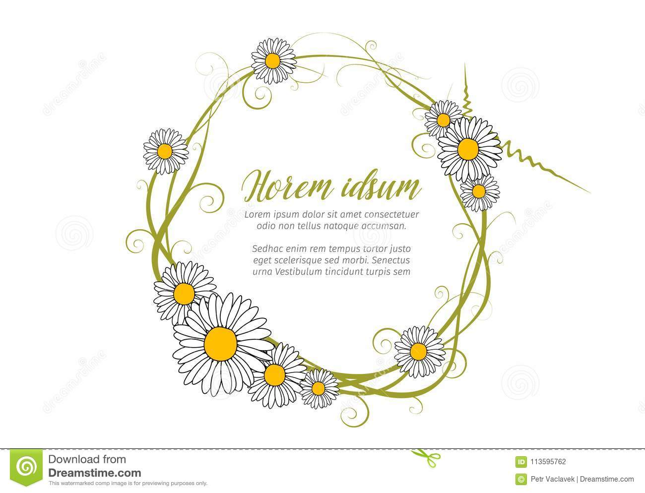 vector round daisy frame template stock vector illustration of