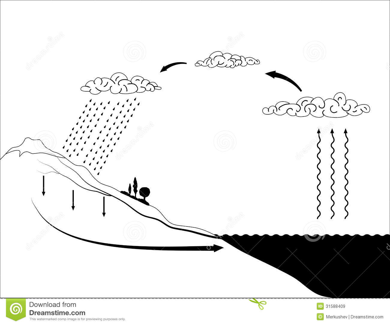 vector schema of the water cycle in nature stock vector