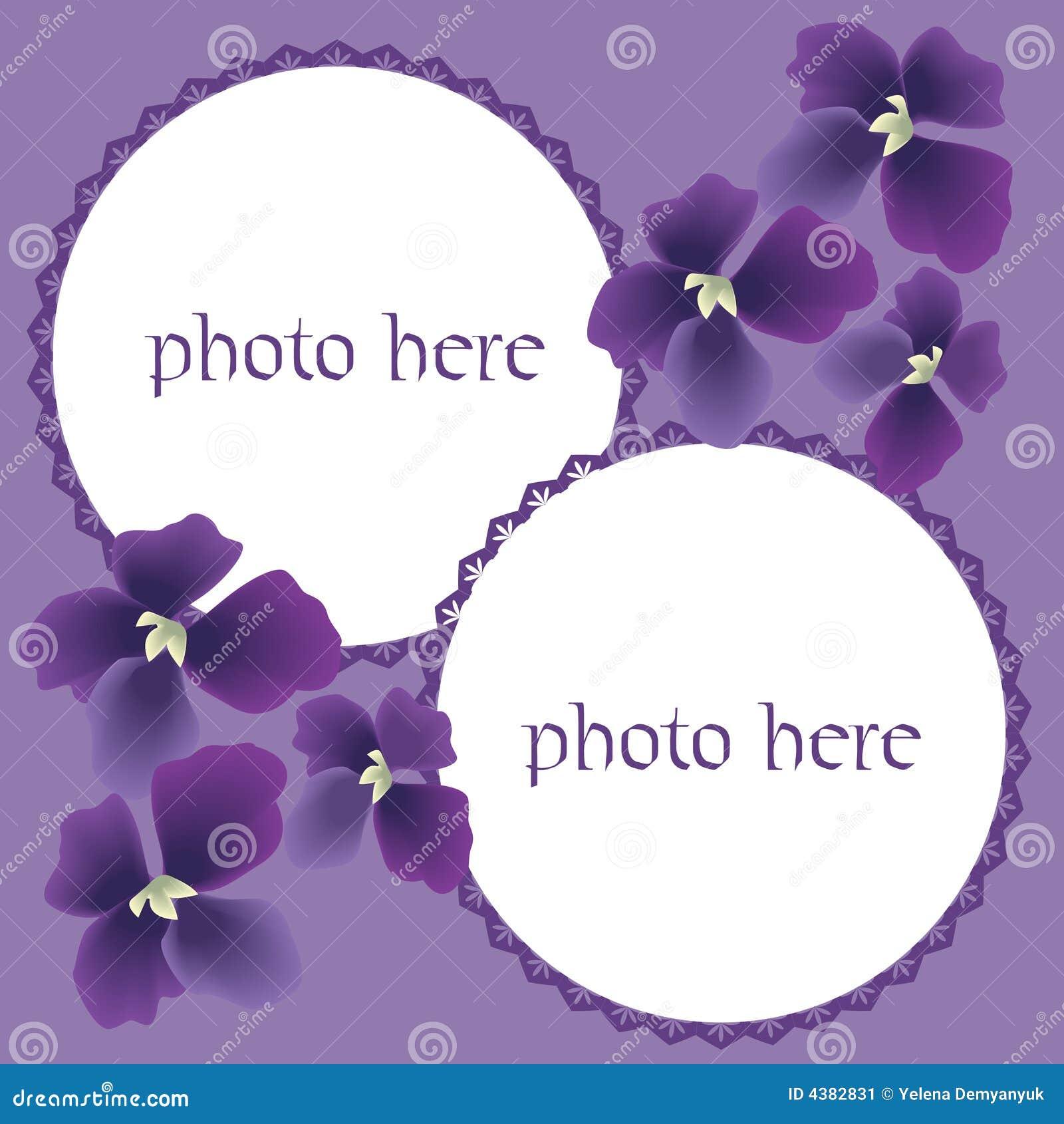 Vector scrapbooking,pictures border with violas