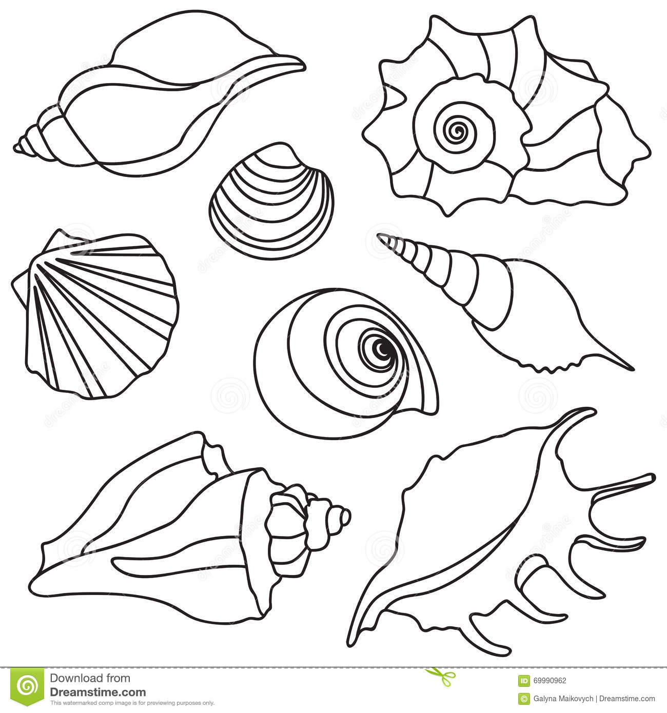 Sketch Of Scallop Coloring Pages