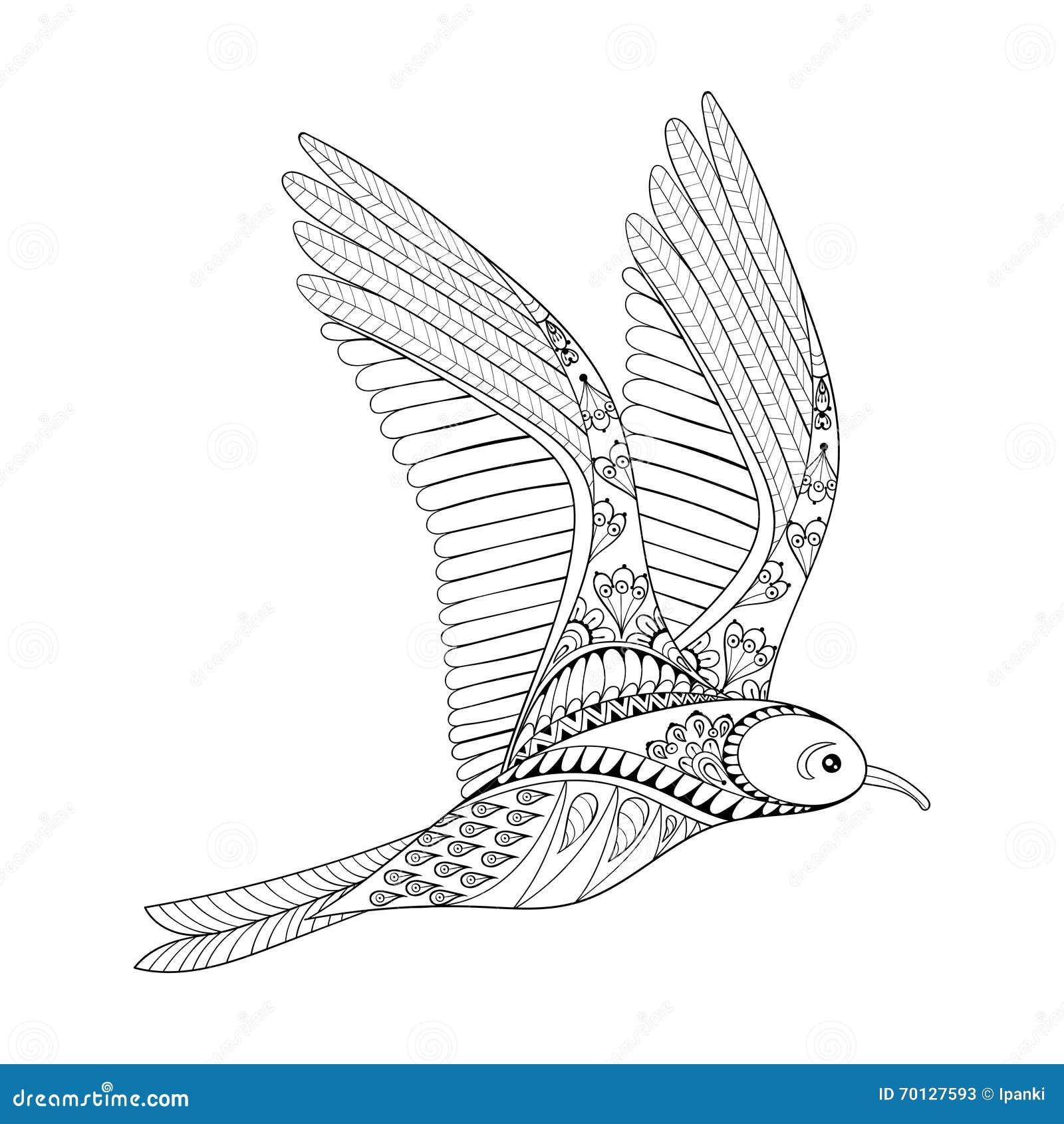vector seagull zentangle common gull illustration flying bird