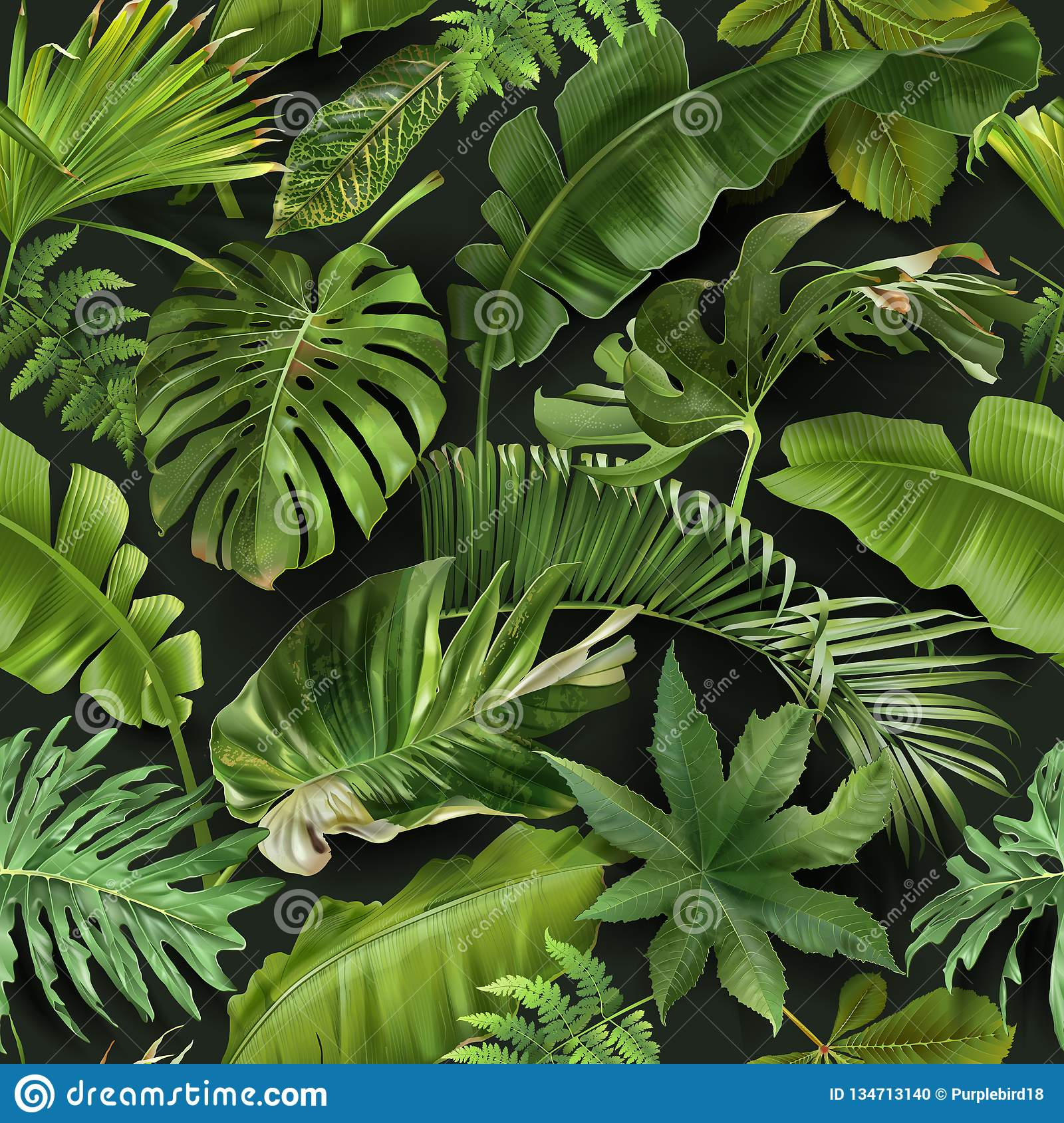 Vector Seamless Pattern With Green Tropical Leaves Stock Vector Illustration Of Forest Leaf 134713140 Download the free graphic resources in the form of png, eps, ai or psd. https www dreamstime com vector seamless pattern green tropical leaves vector seamless pattern green tropical leaves dark green background image134713140