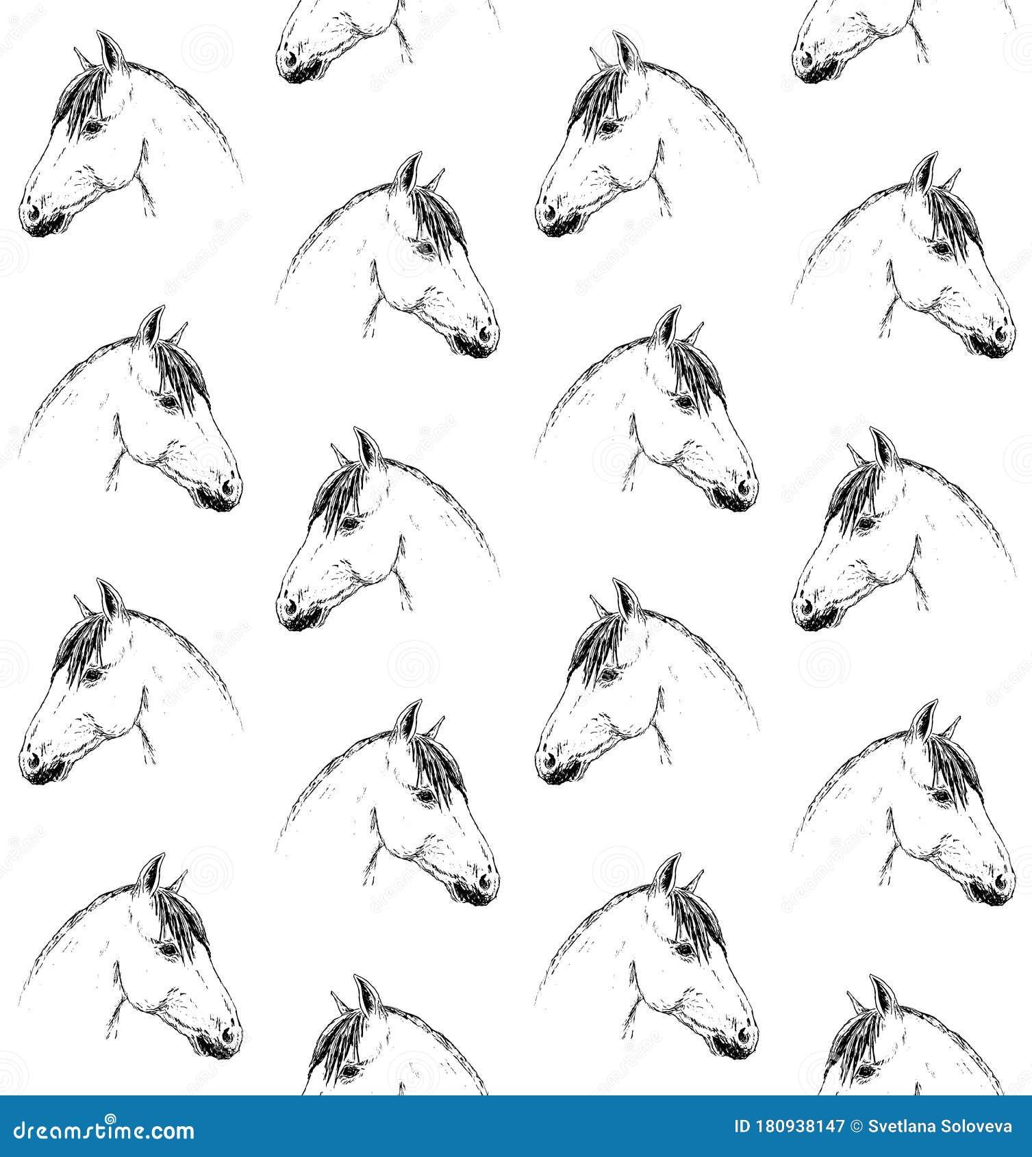 Vector Seamless Pattern Of Sketch Horse Head Stock Illustration Illustration Of Cute Decor 180938147