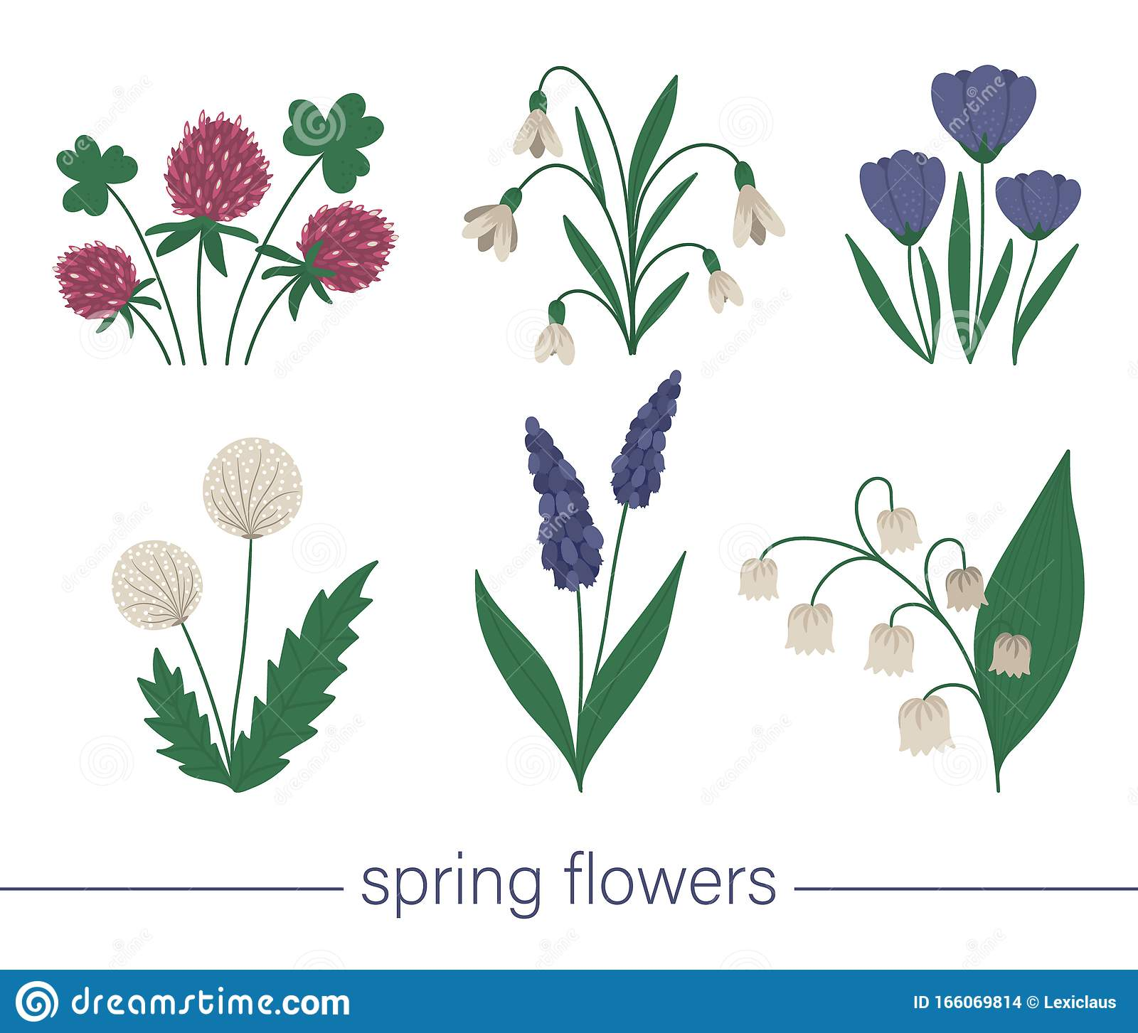 Vector Set Of Cute Flat Spring Flowers First Blooming Plants Illustration Floral Clip Art Collection Isolated On White Stock Vector Illustration Of Background Bunch 166069814