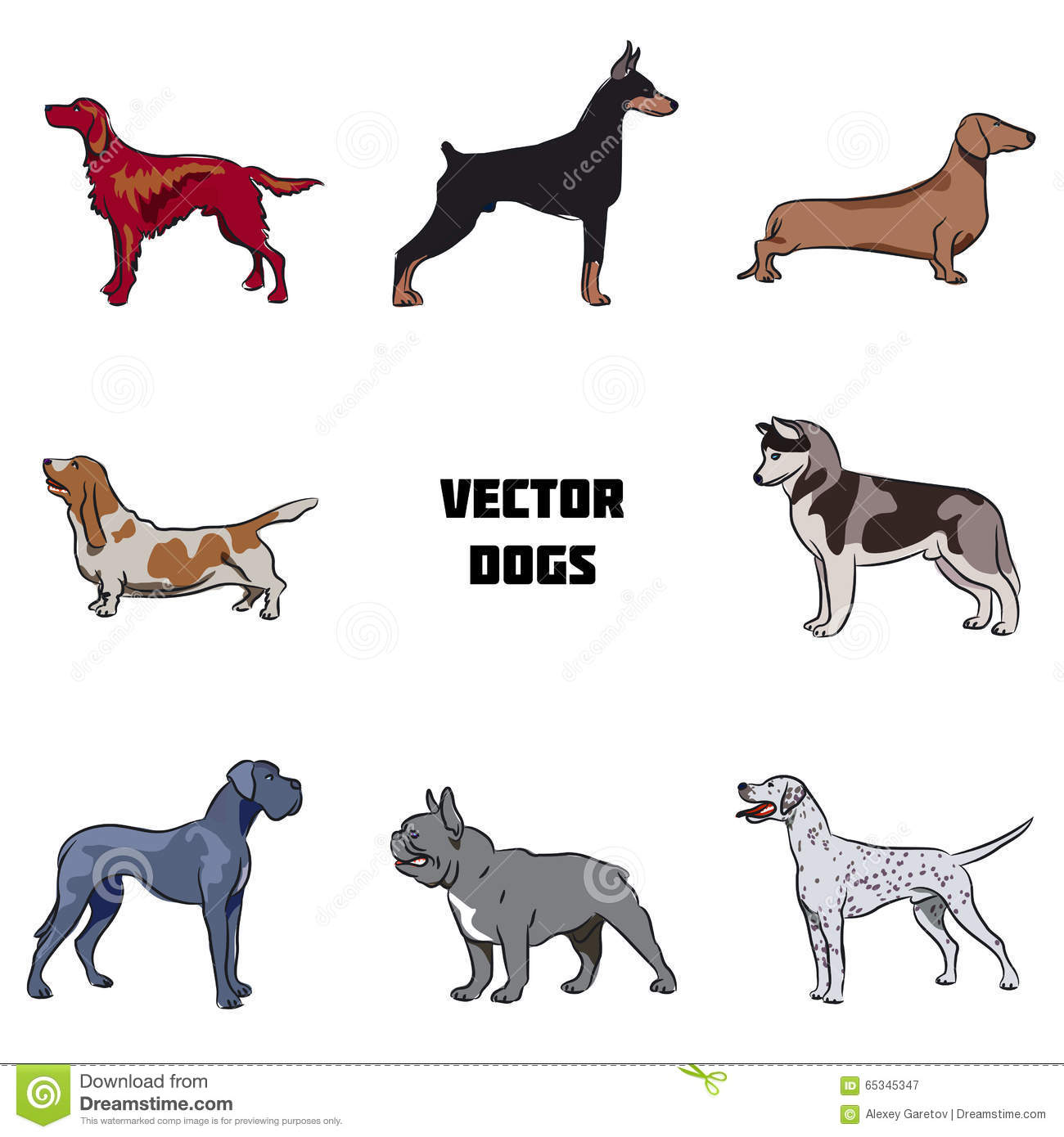 the different dog breeds in the working groups If you are going to try and learn as many dog breeds as you can it helps to know a bit about the different groups each group has a job or a purpose and it's easier to memorise dogs by their specified group.