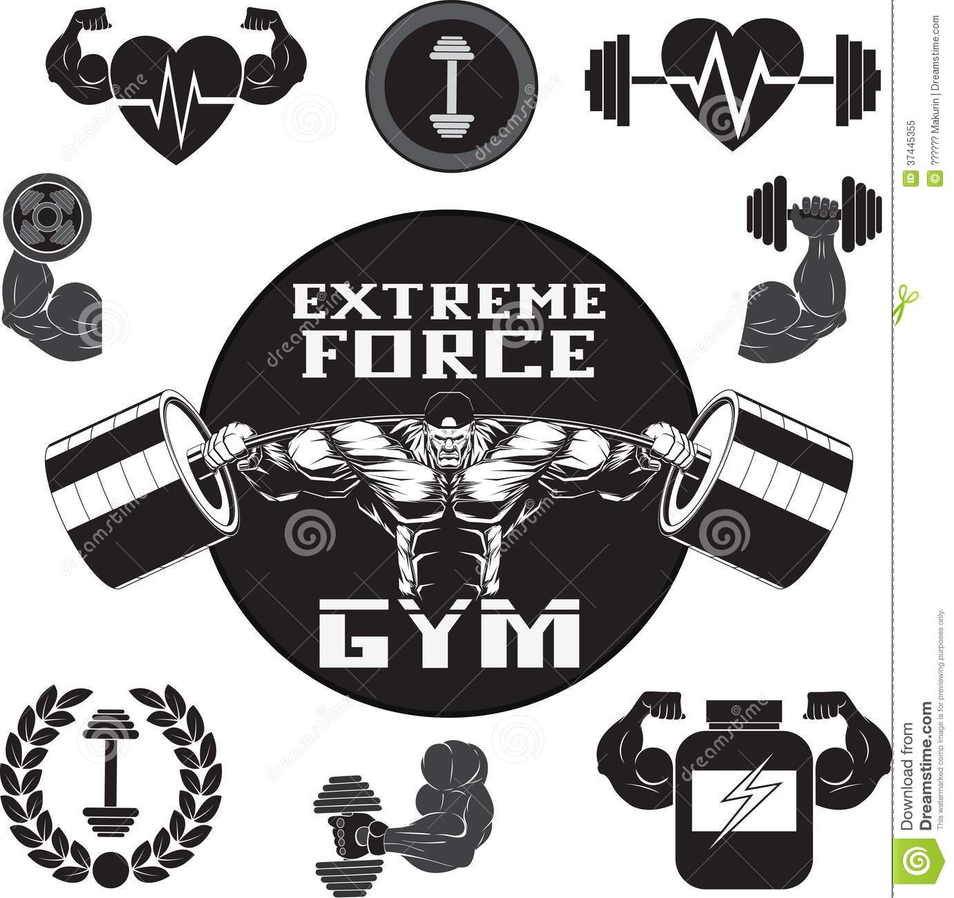 Vector Set Gym Stock Vector Illustration Of Insignia