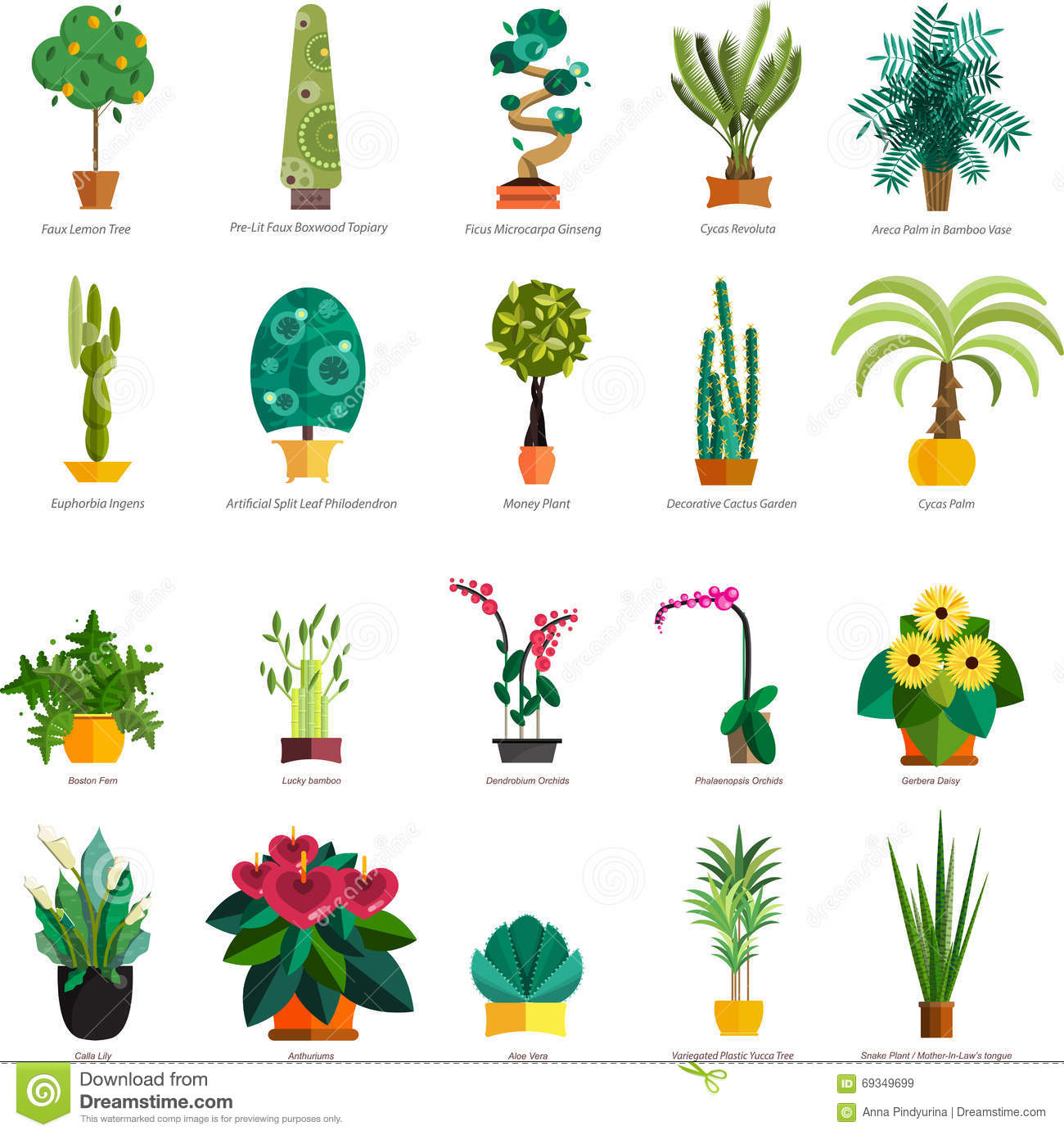 Vector Set Of Indoor Tree Home Plants In Pots. Illustration Stock ...