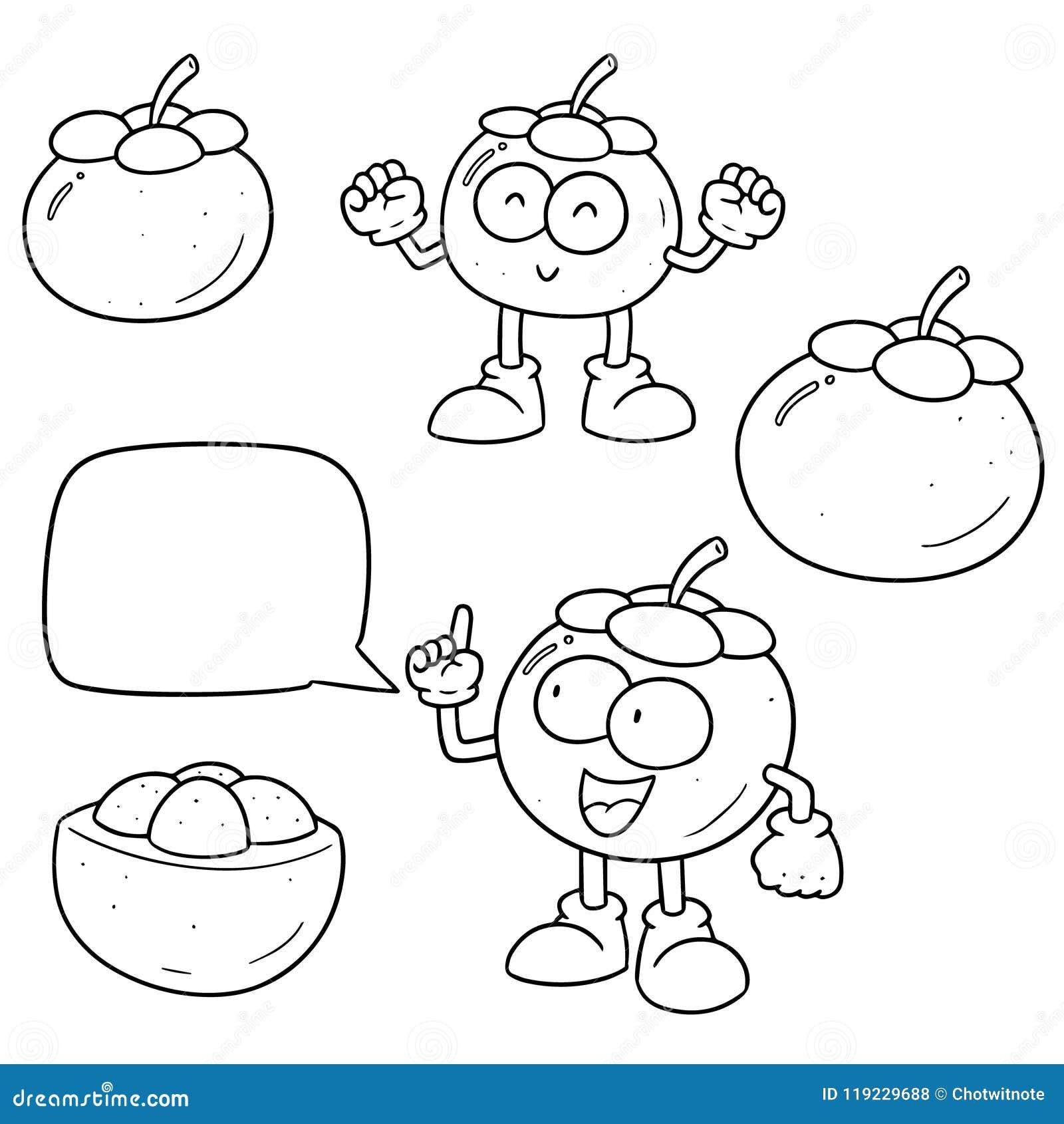 Vector Set Of Mangosteen Stock Vector Illustration Of Mangosteen