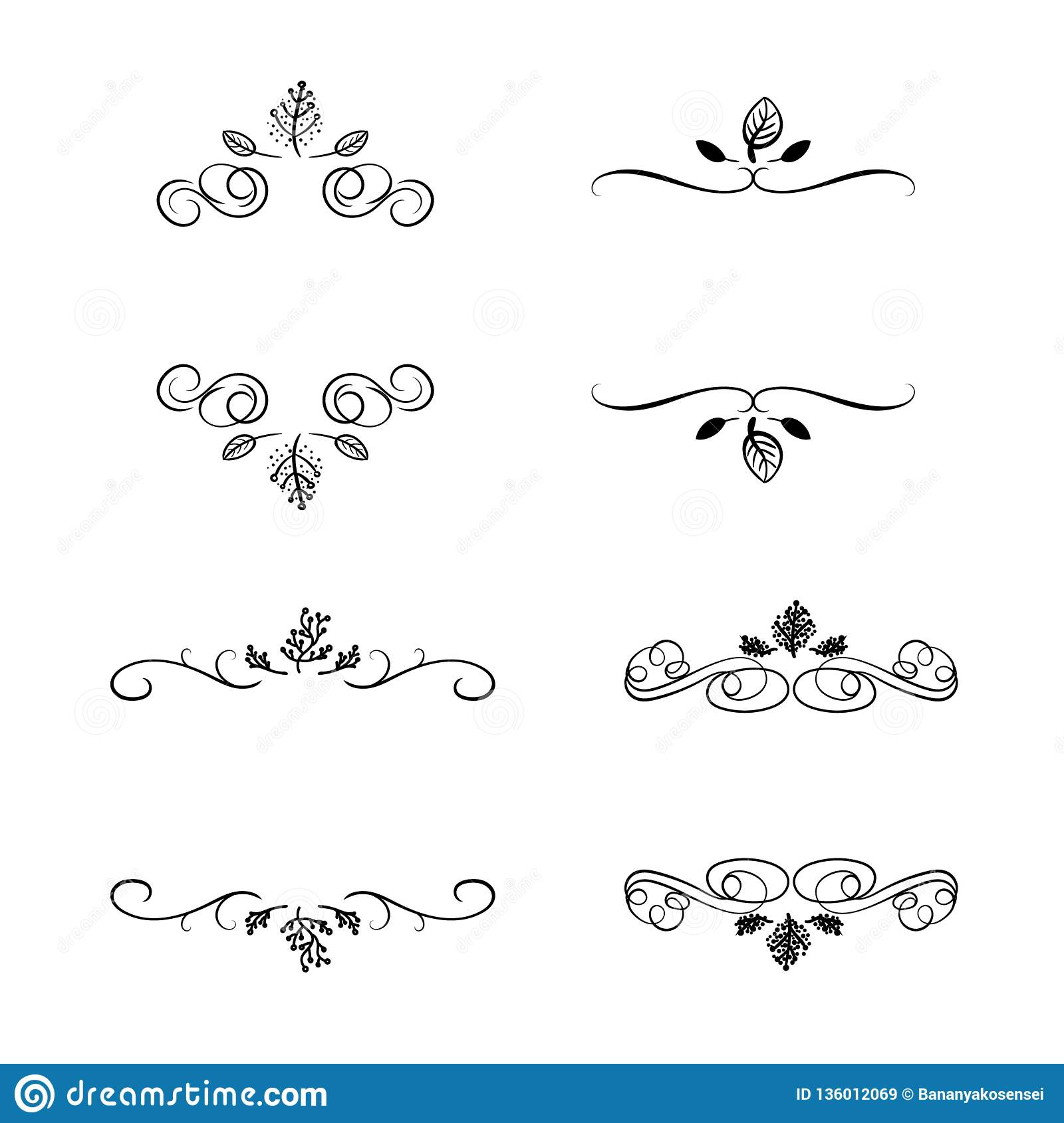 Vector Set Of Natural Frames Swirly Lines And Hand Drawn