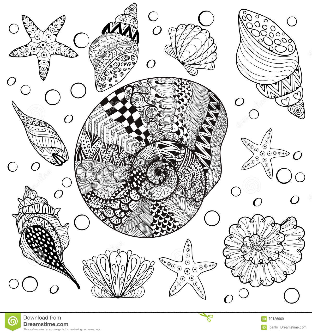 Vector Set Sea Shells Zentangle Shelsl For Adult Anti Stress Coloring Pages Patterned Shell Cockleshell Illustration Tattoos With High Details